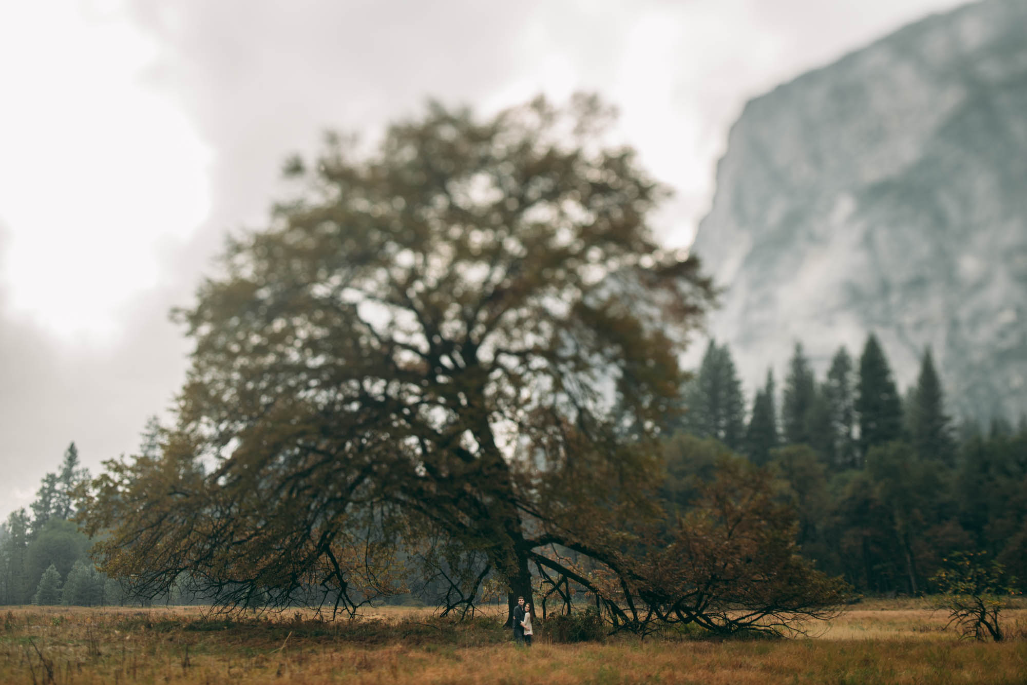 ©Isaiah & Taylor Photography - Stormy Cliffside Engagement, Yosemite California-10.jpg