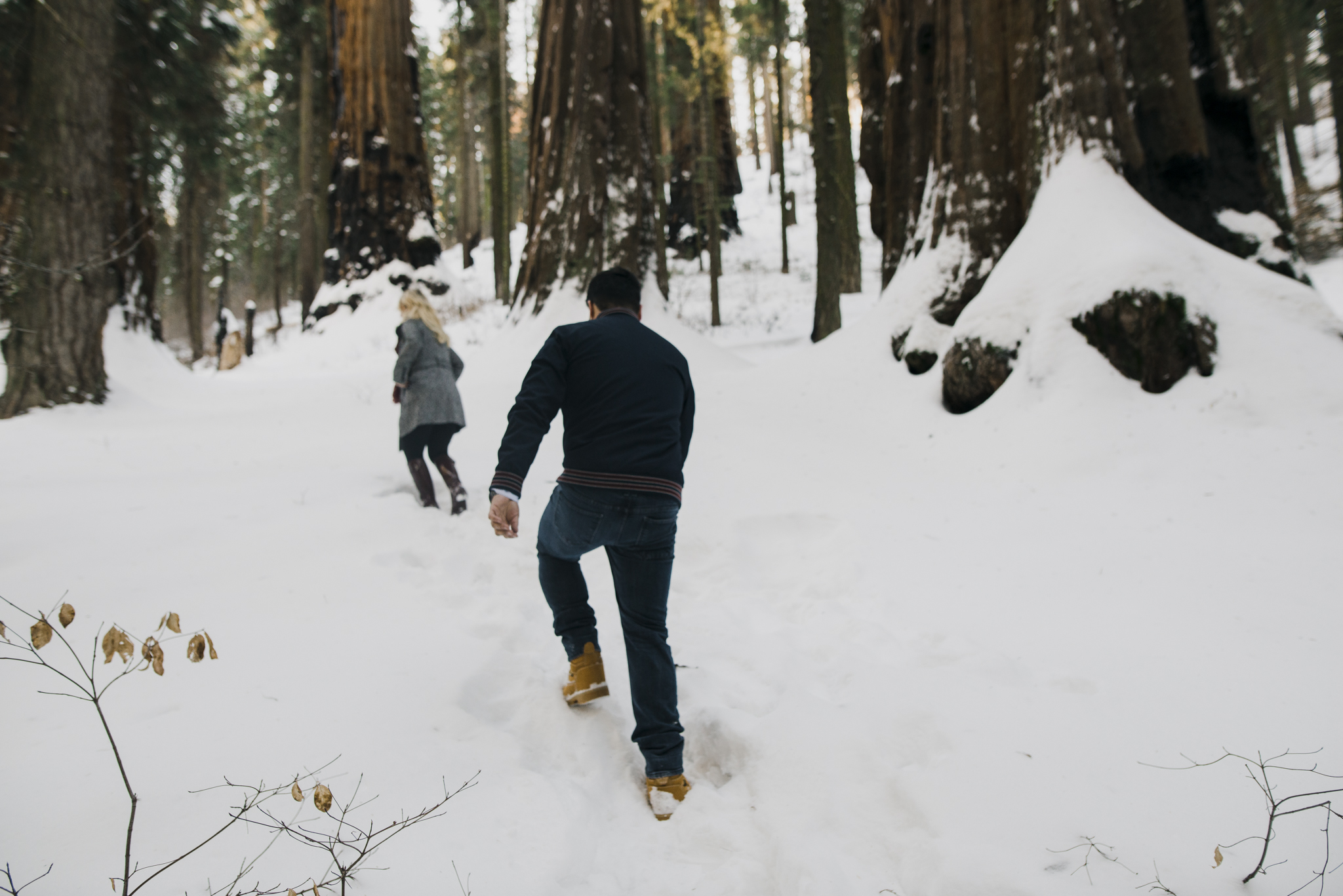 ©Isaiah-&-Taylor-Photography---George-&-Alyssa-Engagement---Sequoia-National-Park,-California-1.jpg