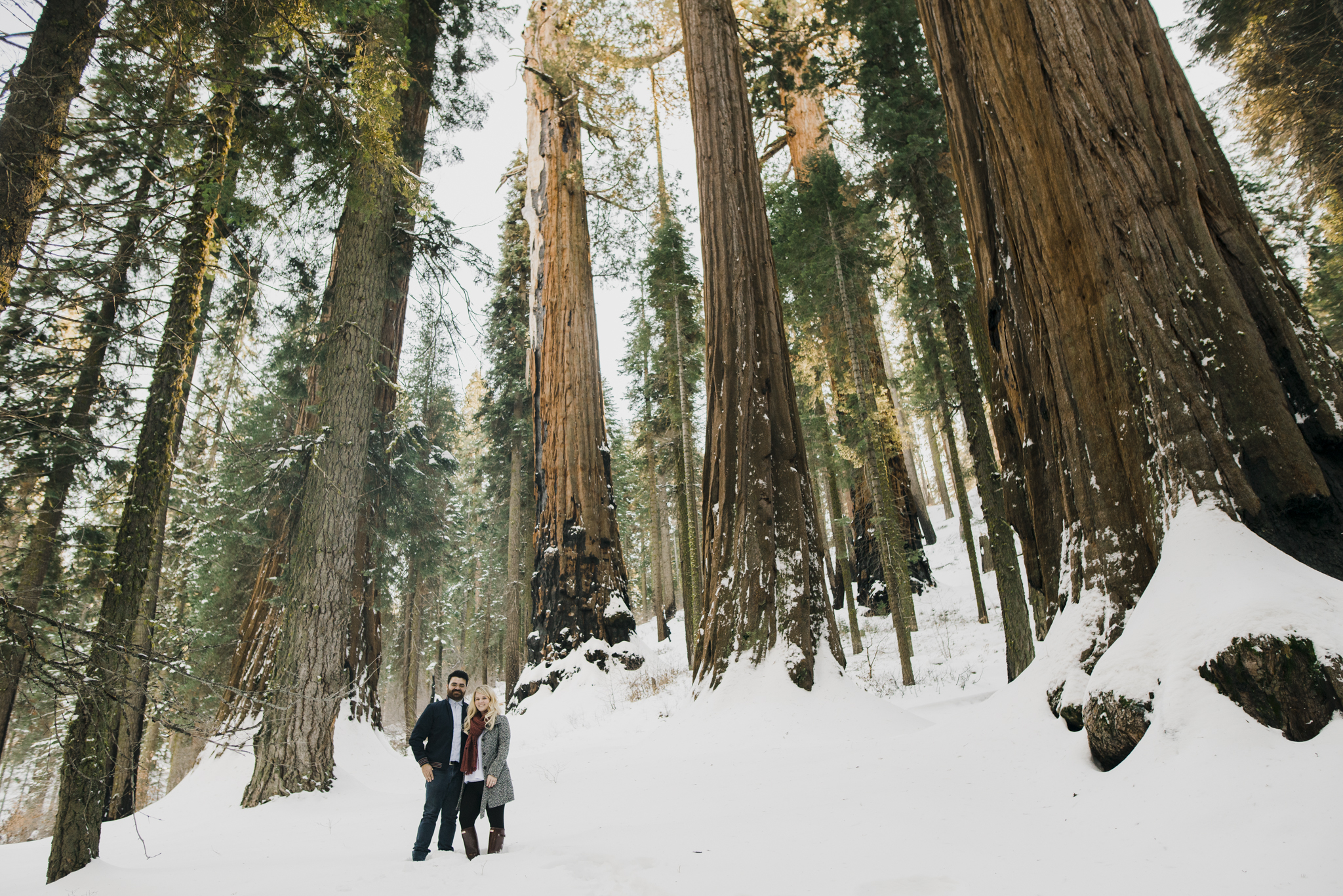 ©Isaiah-&-Taylor-Photography---George-&-Alyssa-Engagement---Sequoia-National-Park,-California-5.jpg