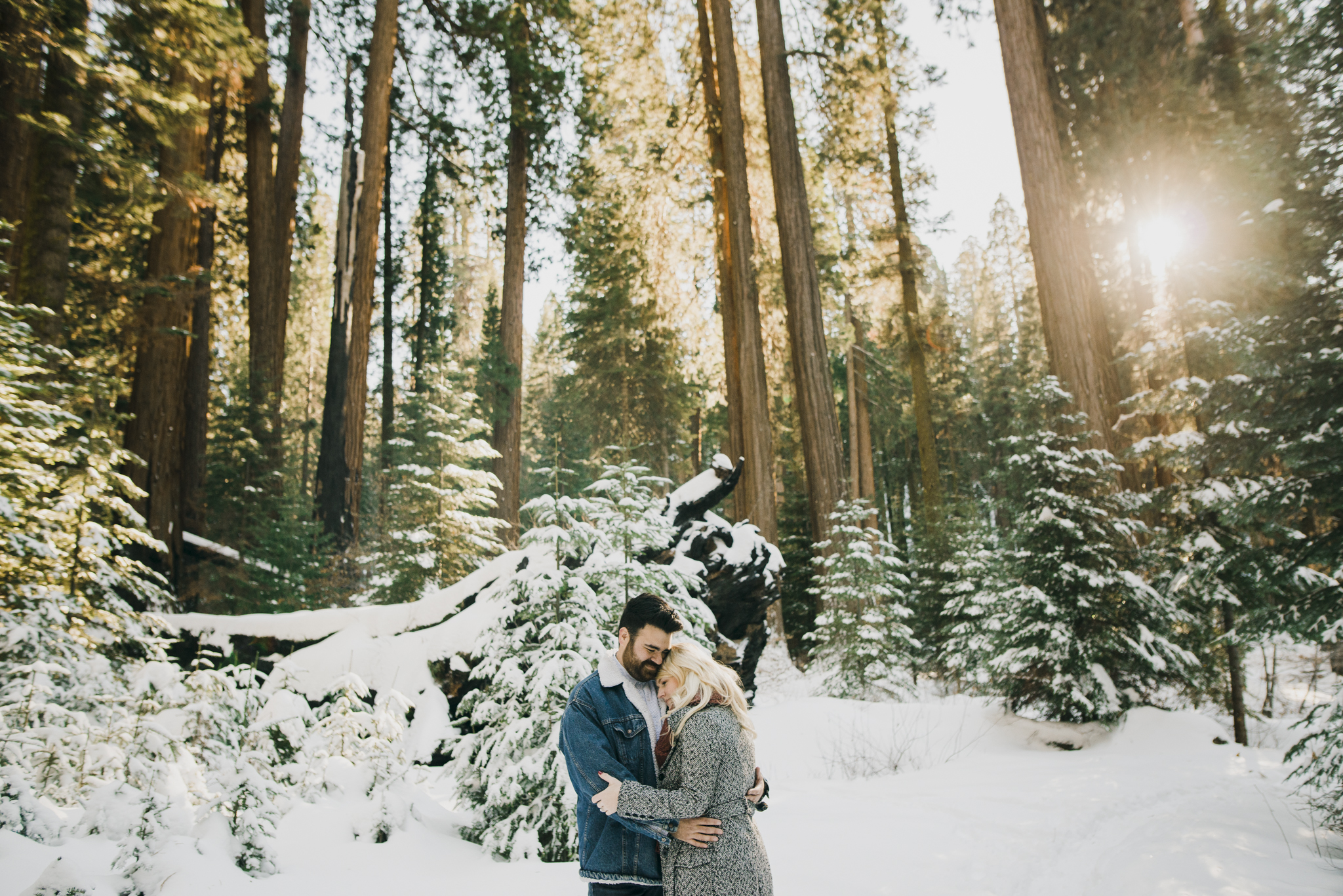 ©Isaiah-&-Taylor-Photography---George-&-Alyssa-Engagement---Sequoia-National-Park,-California-27.jpg