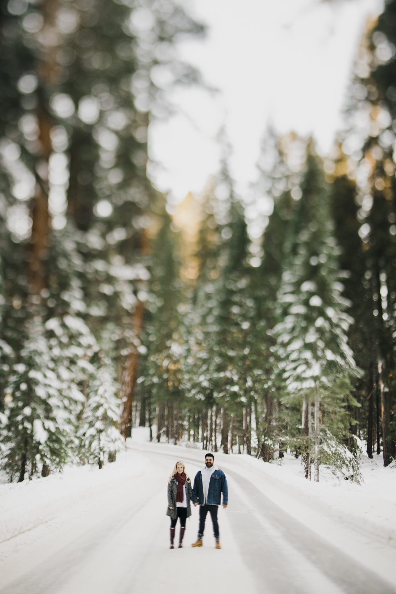 ©Isaiah-&-Taylor-Photography---George-&-Alyssa-Engagement---Sequoia-National-Park,-California-78.jpg
