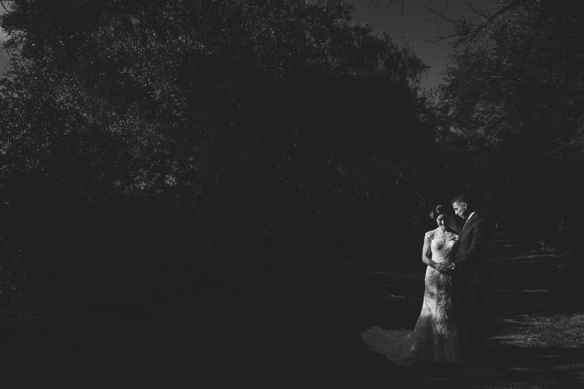 ©Isaiah-&-Taylor-Photography---Highland-Springs-Resort-Wedding,-Cherry-Valley-062.jpg