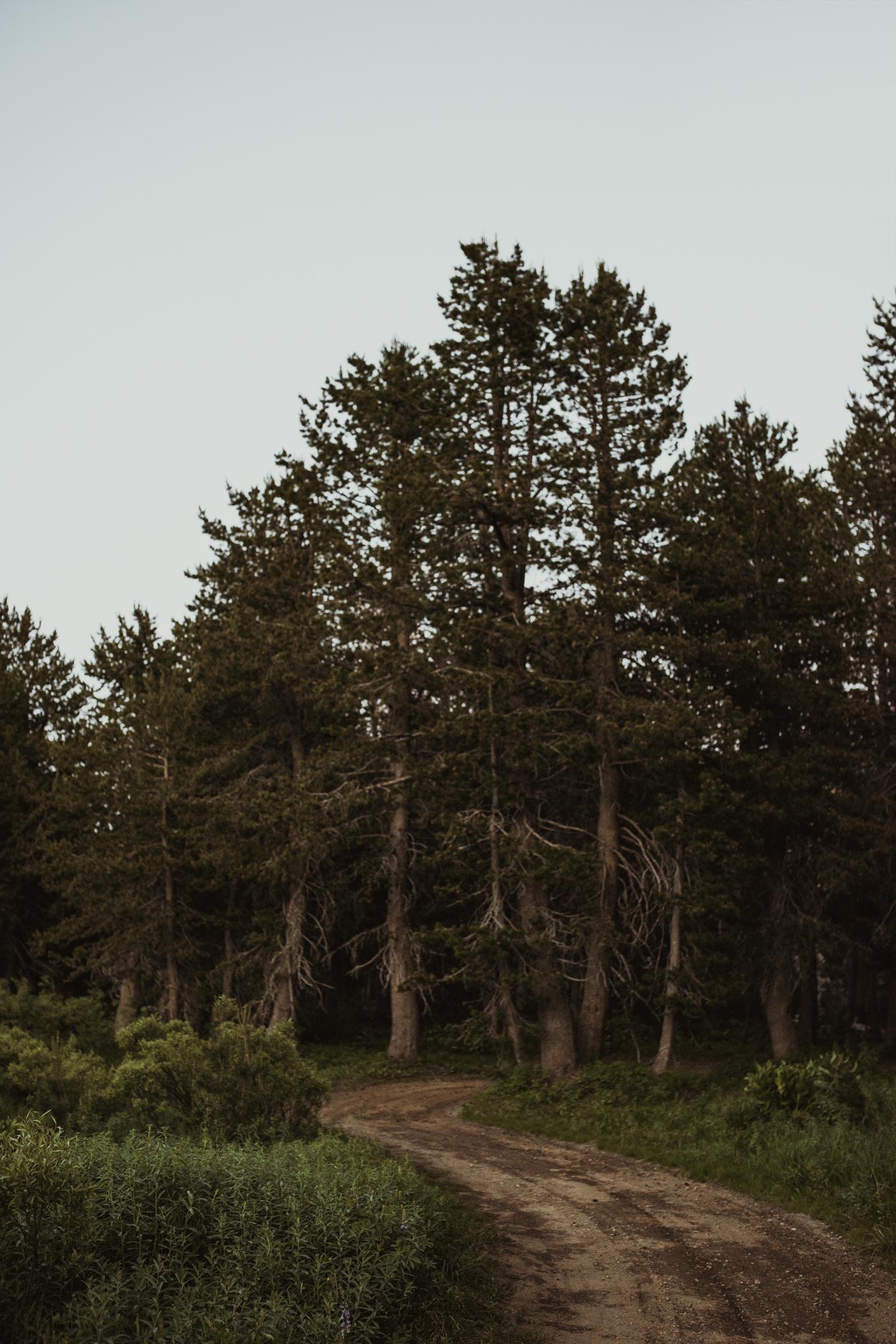 ©Isaiah & Taylor Photography -The Hideout Wedding, Kirkwood California, Lake Tahoe Wedding Photographer-16.jpg