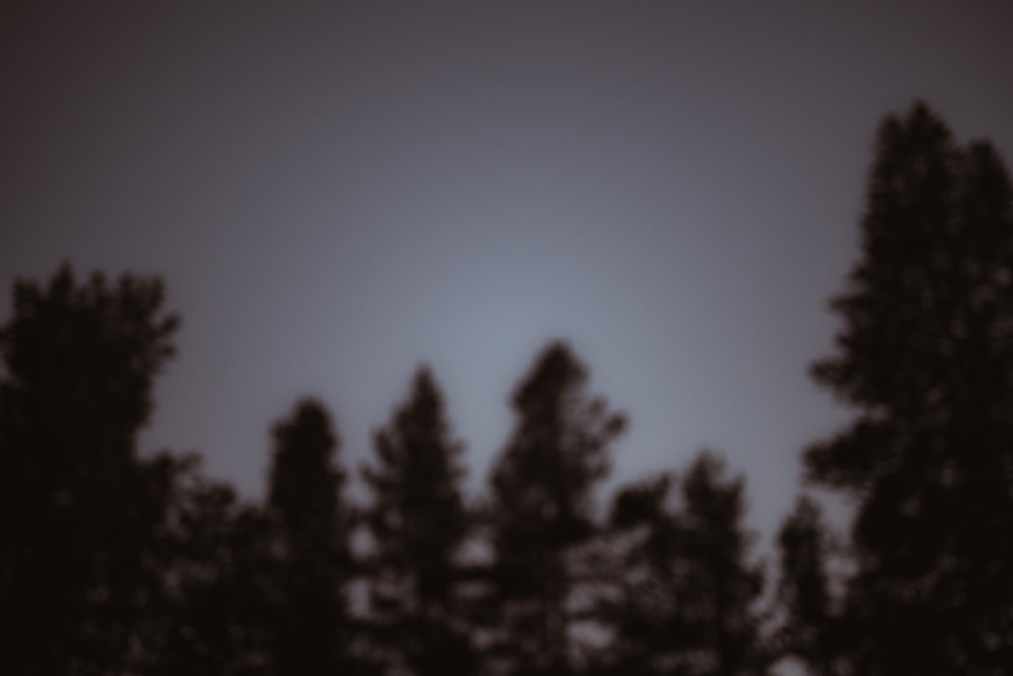 ©Isaiah & Taylor Photography -The Hideout Wedding, Kirkwood California, Lake Tahoe Wedding Photographer-23.jpg
