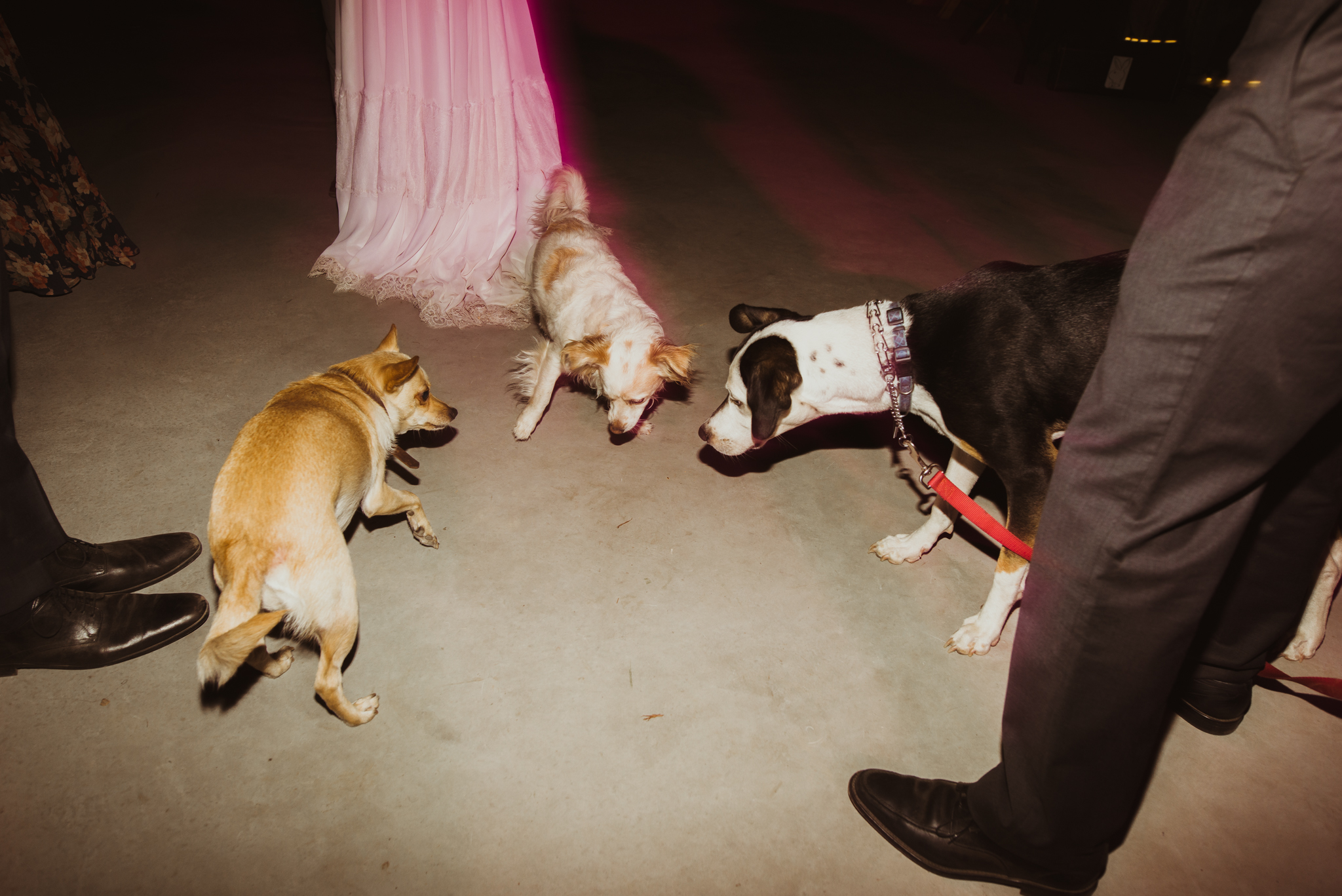 ©Isaiah & Taylor Photography - The Hideout, Kirkwood CA wedding -19.jpg