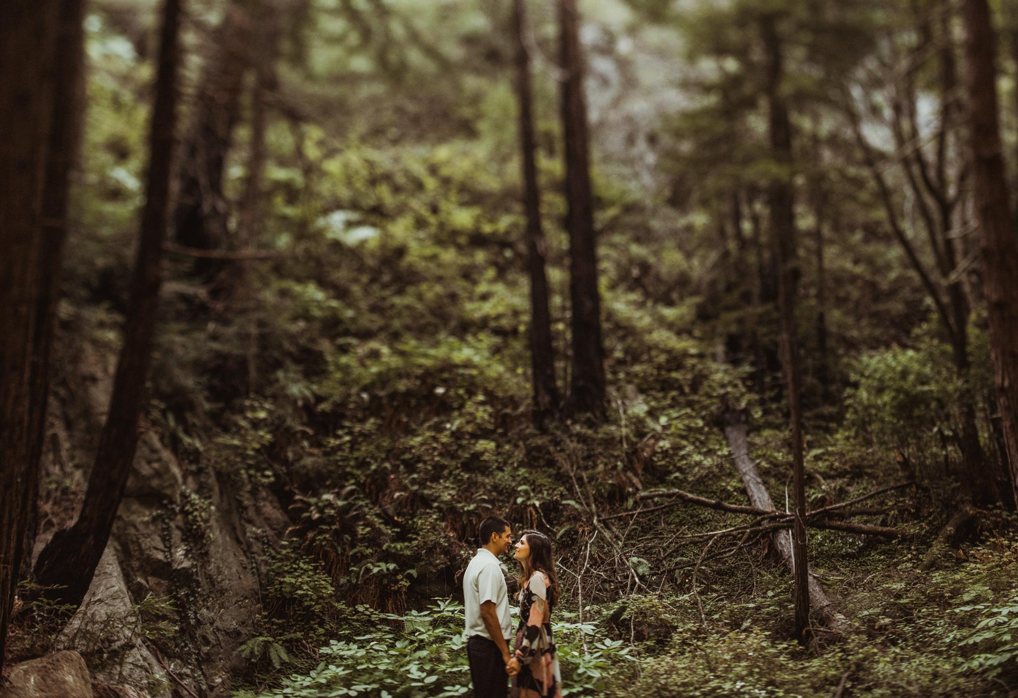 ©Isaiah + Taylor Photography - Big Sur Wedding Engagement Photographer-02.jpg