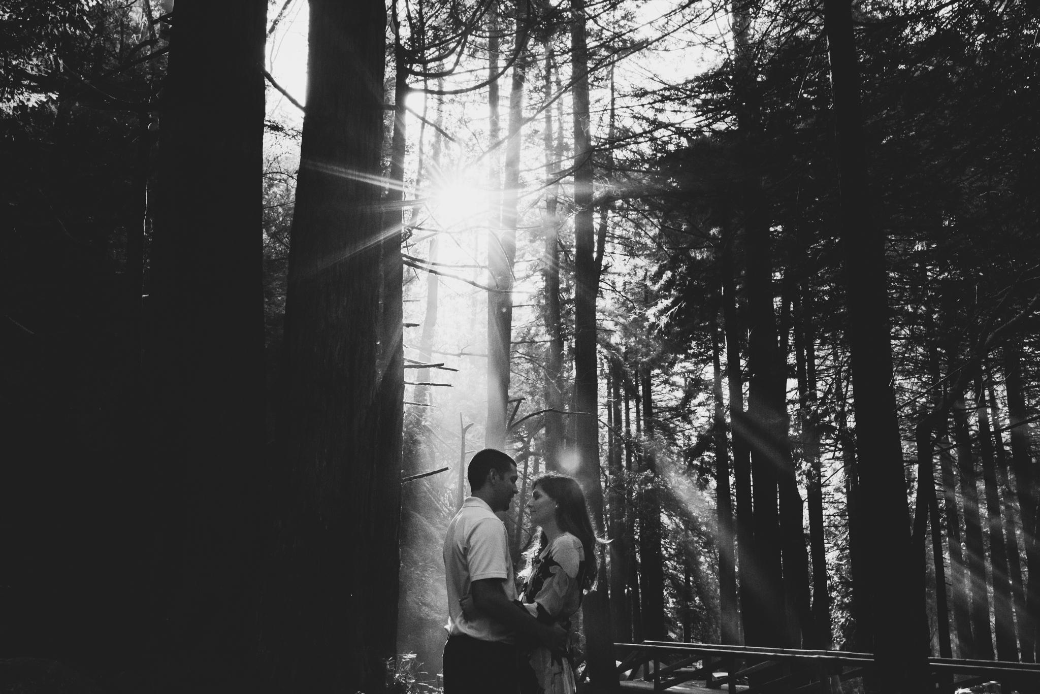 ©Isaiah + Taylor Photography - Big Sur Wedding Engagement Photographer-36.jpg