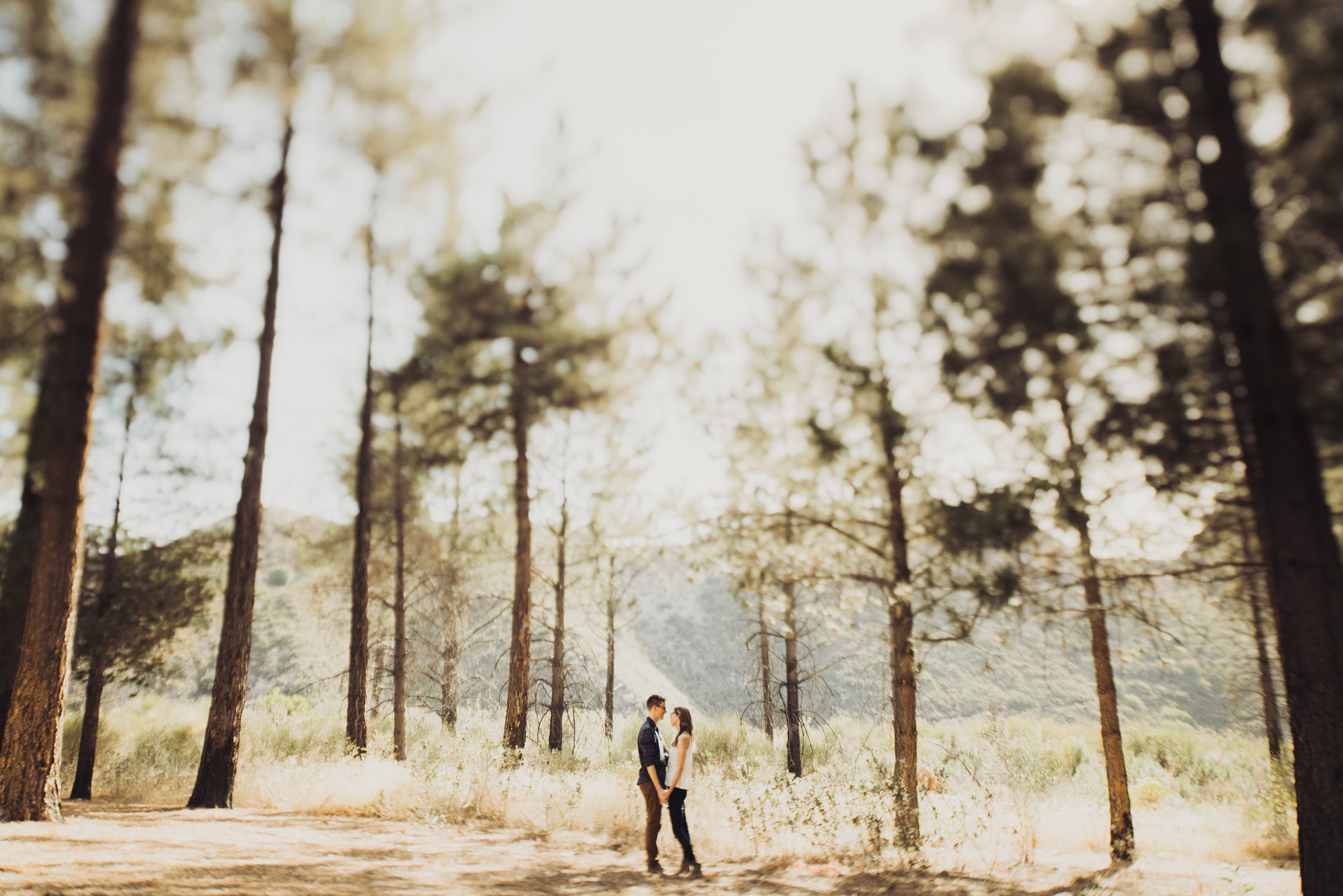 ©Isaiah + Taylor Photography - Los Angeles National Forest Engagement-0016.jpg