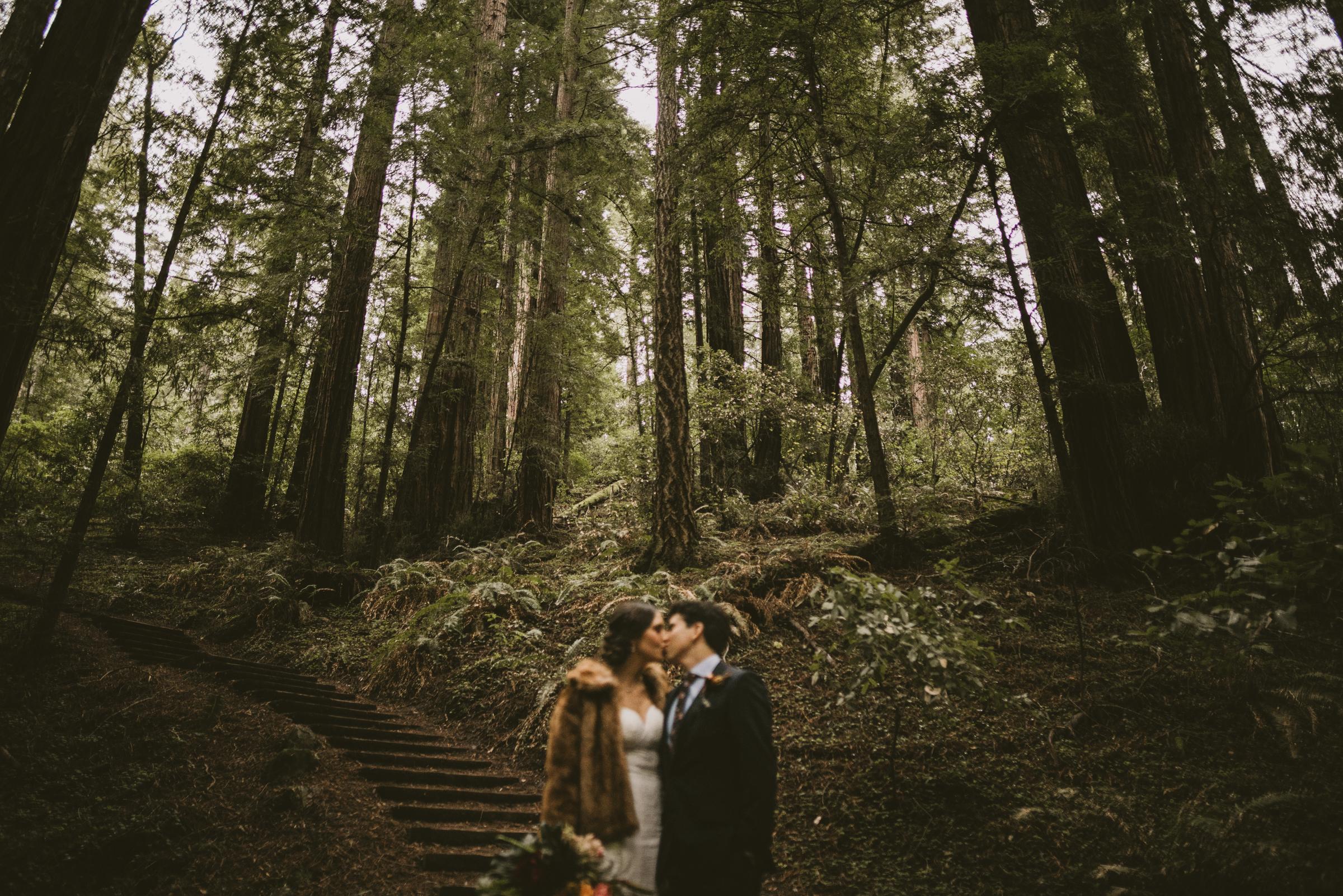 ©Isaiah + Taylor Photography - San Fransisco Elopement, Muir Woods-43.jpg