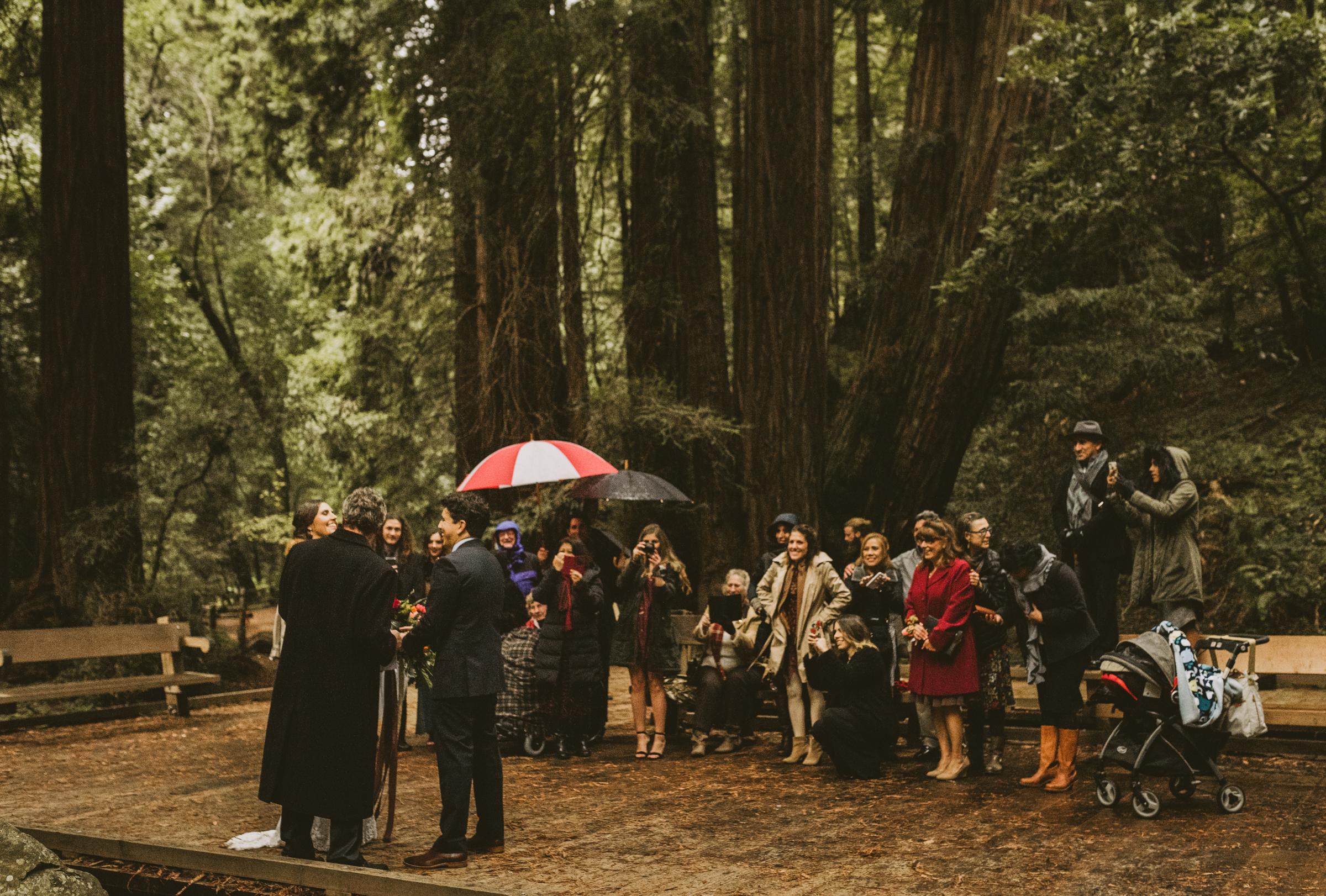 ©Isaiah + Taylor Photography - San Fransisco Elopement, Muir Woods-61.jpg