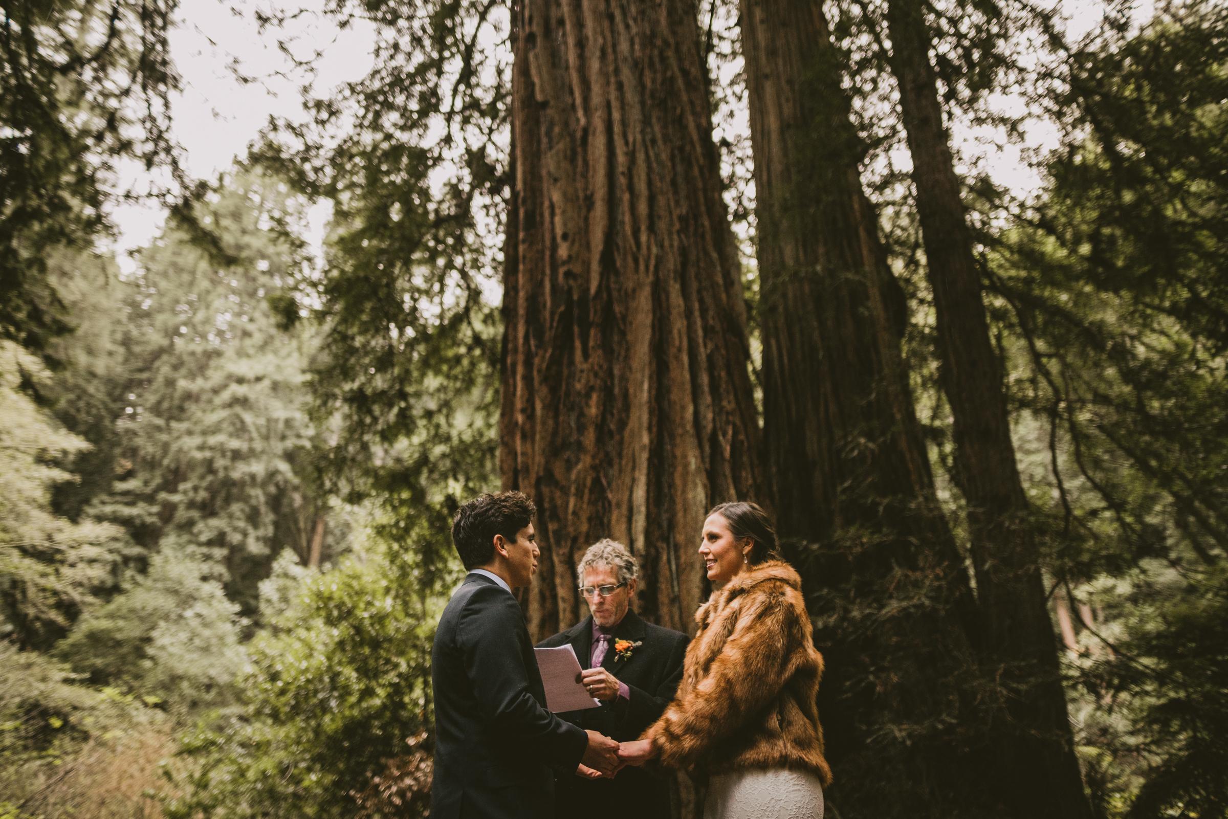 ©Isaiah + Taylor Photography - San Fransisco Elopement, Muir Woods-64.jpg