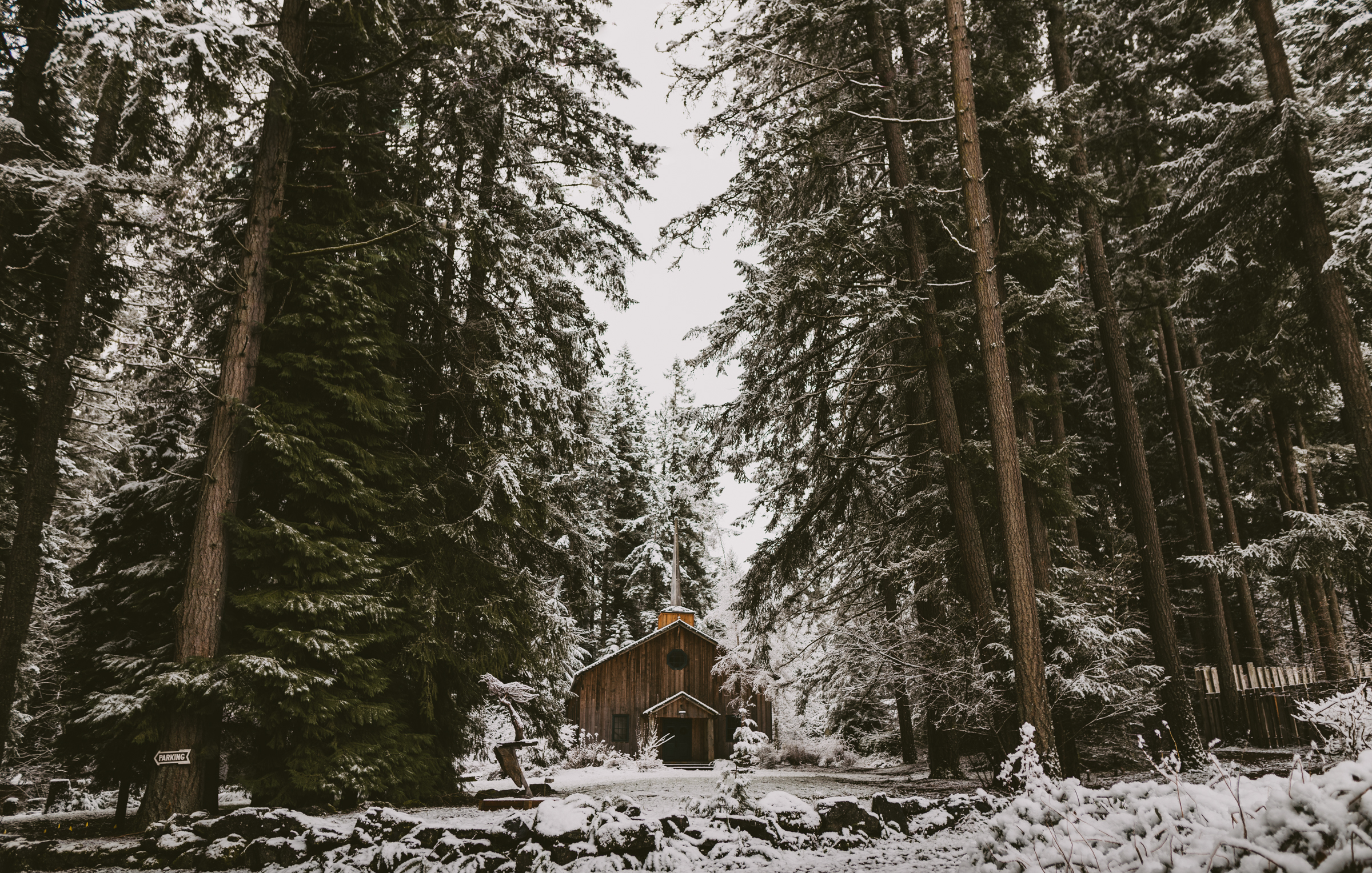 © Isaiah + Taylor Photography - Portland, Oregon Winter Forest Cabin Engagement-2.jpg