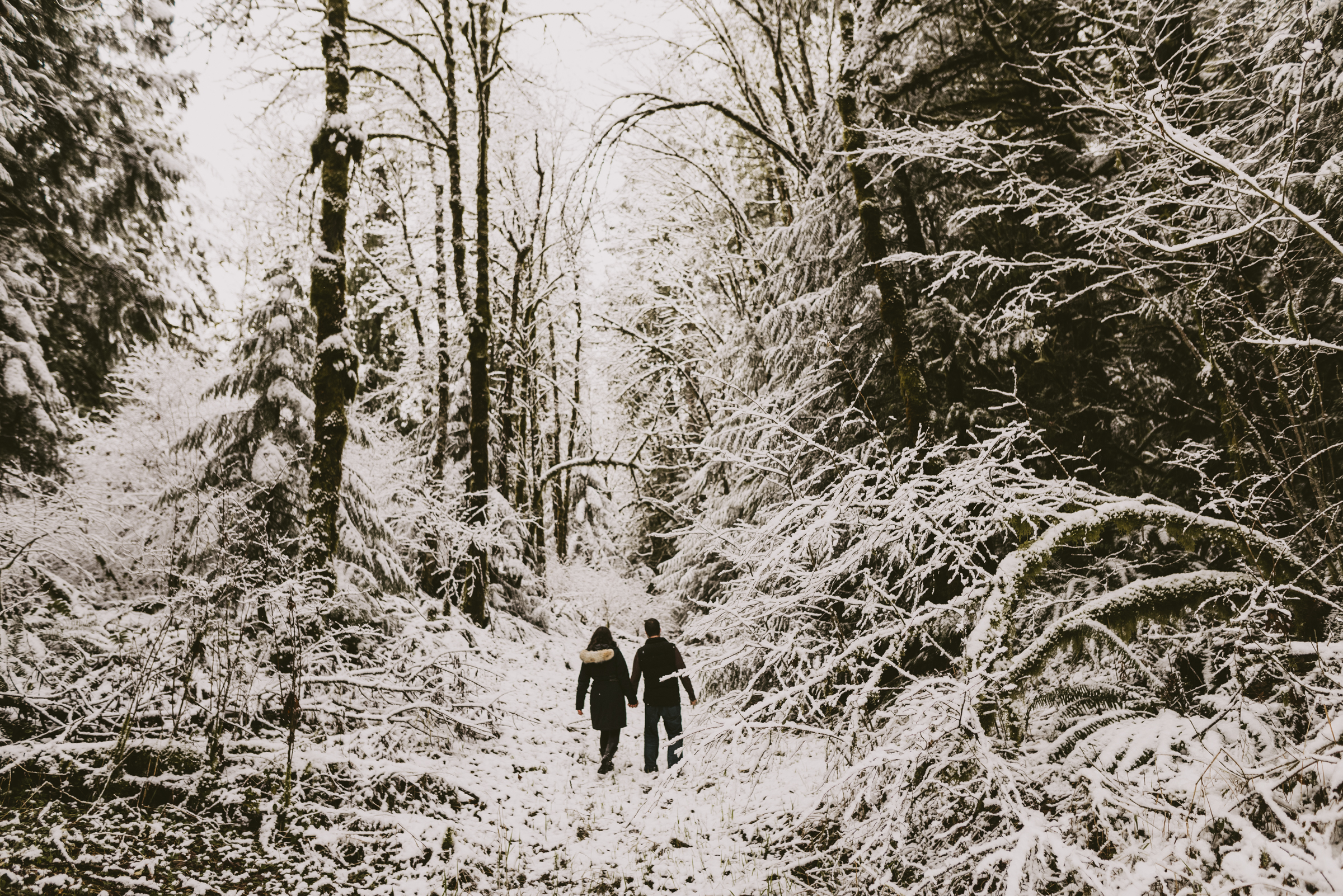 © Isaiah + Taylor Photography - Portland, Oregon Winter Forest Cabin Engagement-18.jpg