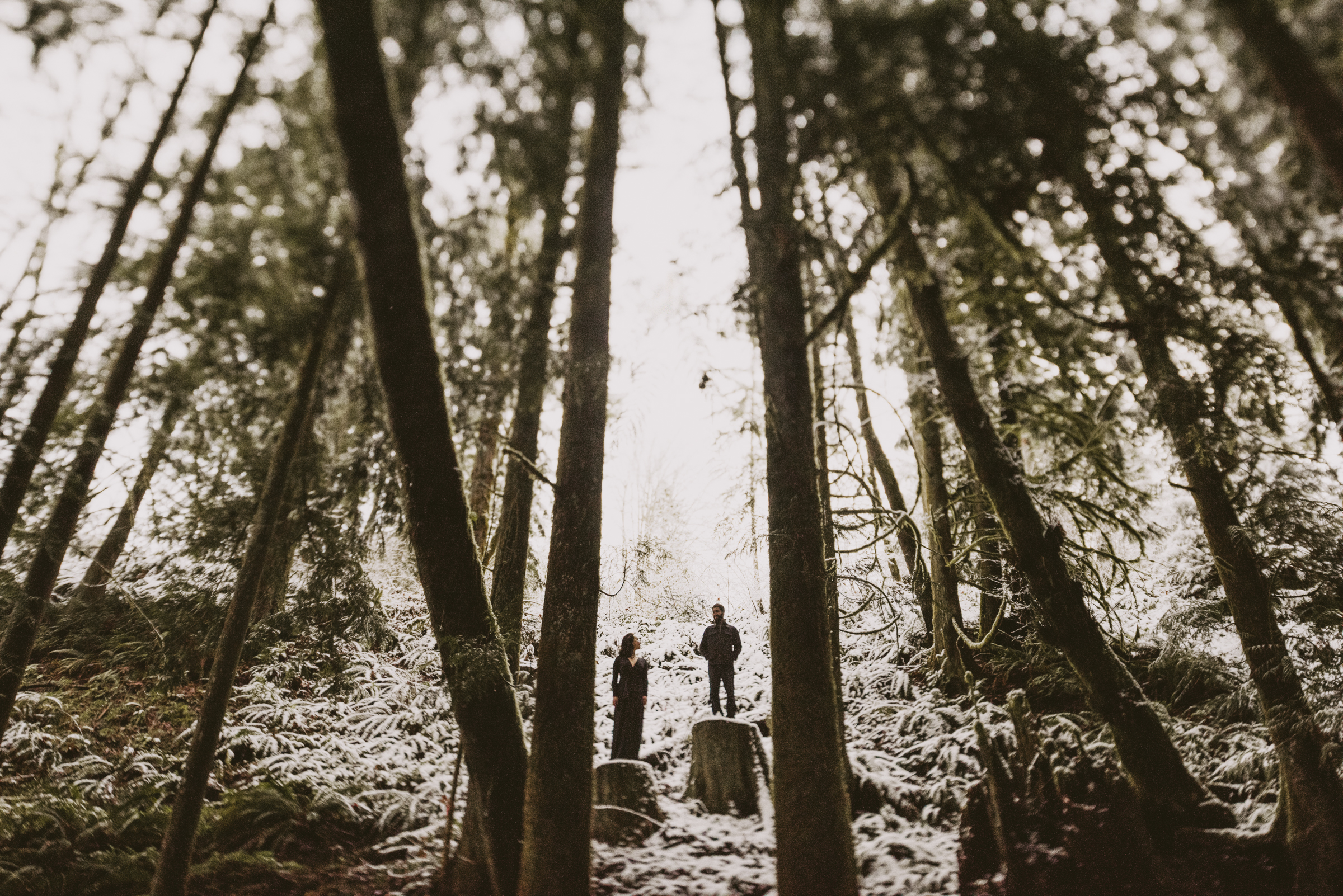 © Isaiah + Taylor Photography - Portland, Oregon Winter Forest Cabin Engagement-48.jpg