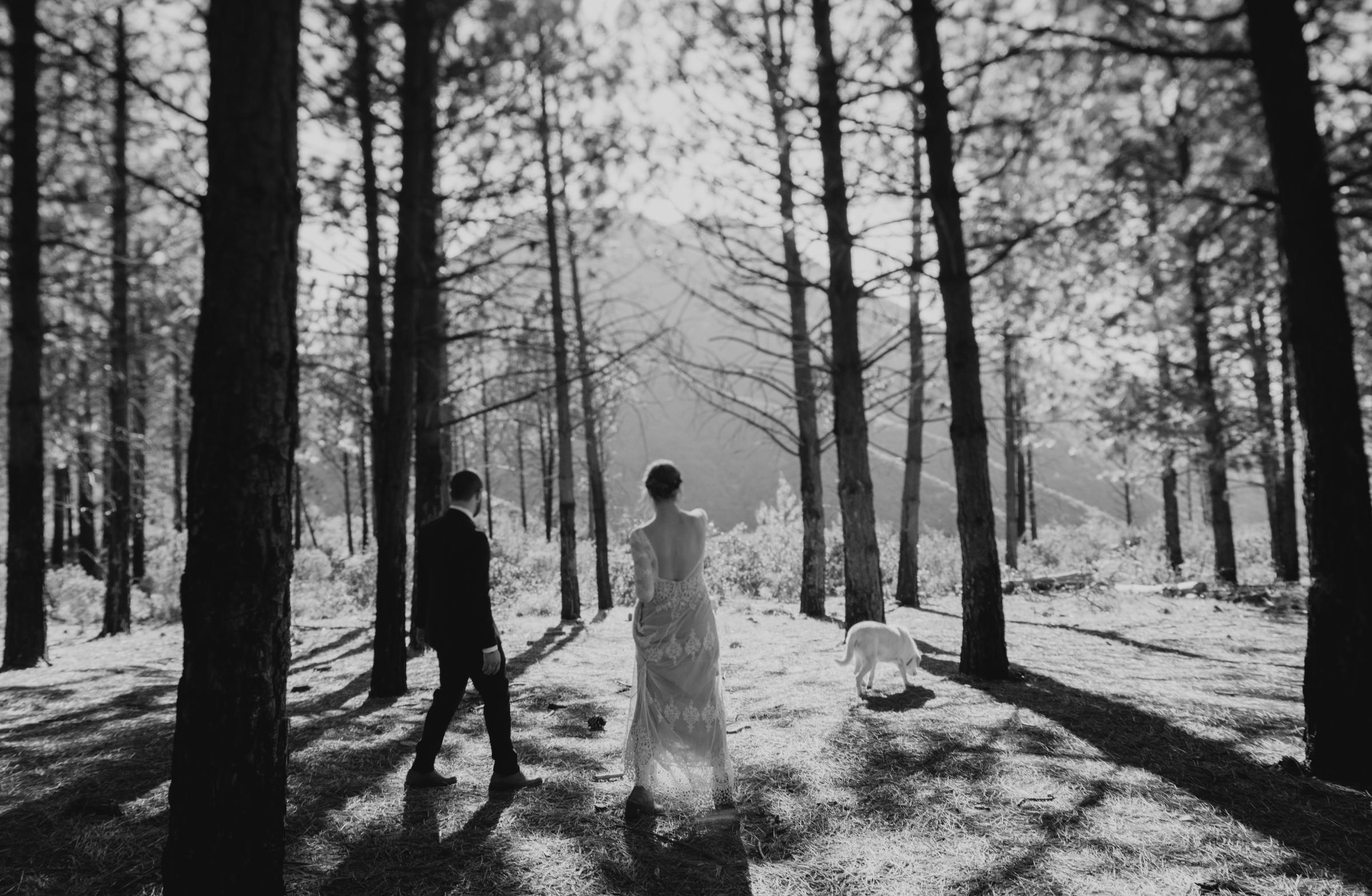 ©Isaiah + Taylor Photography - Los Angeles Wedding Photographers - Los Angeles Forest Wedding -27.jpg