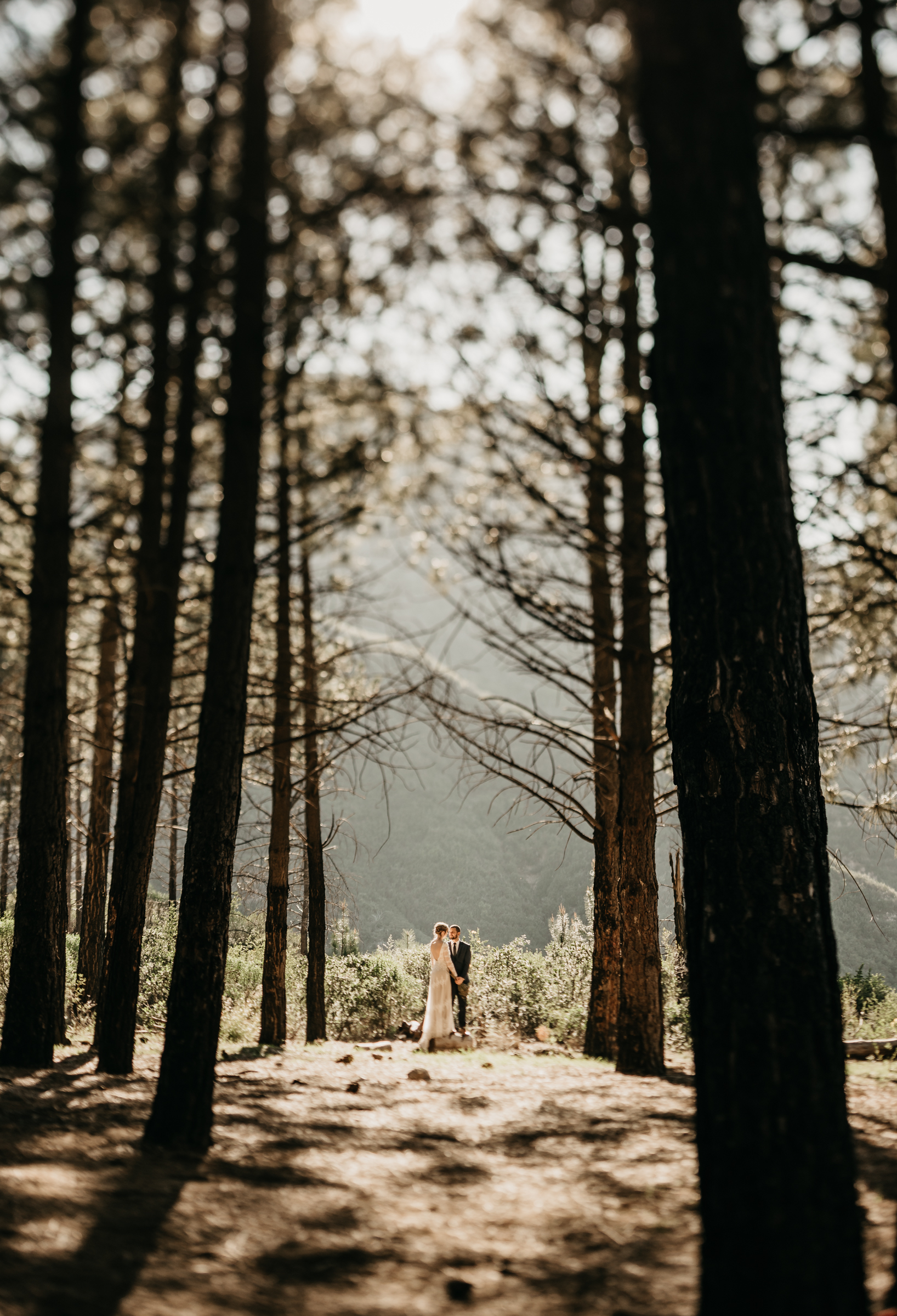 ©Isaiah + Taylor Photography - Los Angeles Wedding Photographers - Los Angeles Forest Wedding -31.jpg