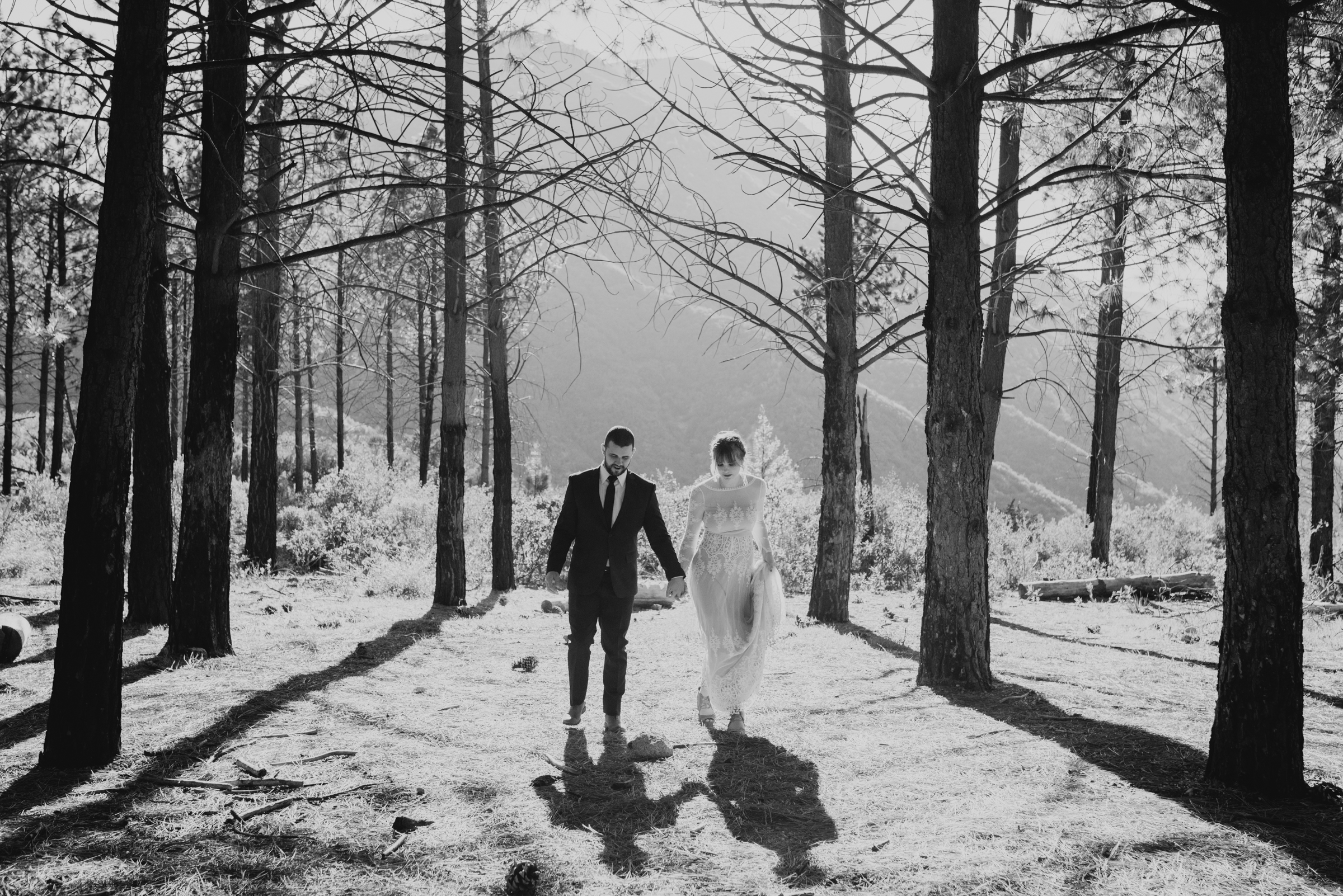 ©Isaiah + Taylor Photography - Los Angeles Wedding Photographers - Los Angeles Forest Wedding -38.jpg
