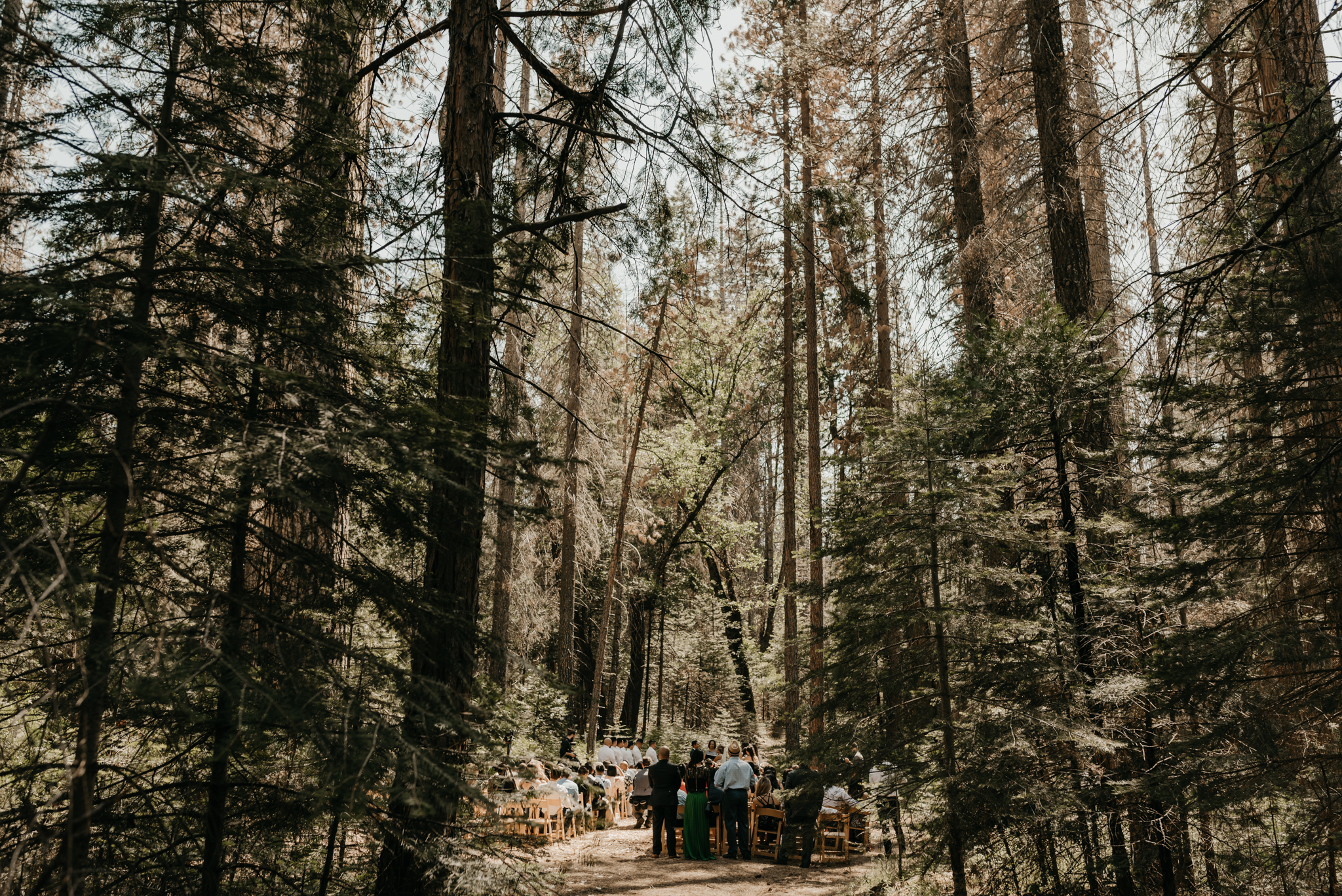 © Isaiah + Taylor Photography - Evergreen Lodge Destination Yoesmite Wedding - Los Angeles Wedding Photographer-116.jpg