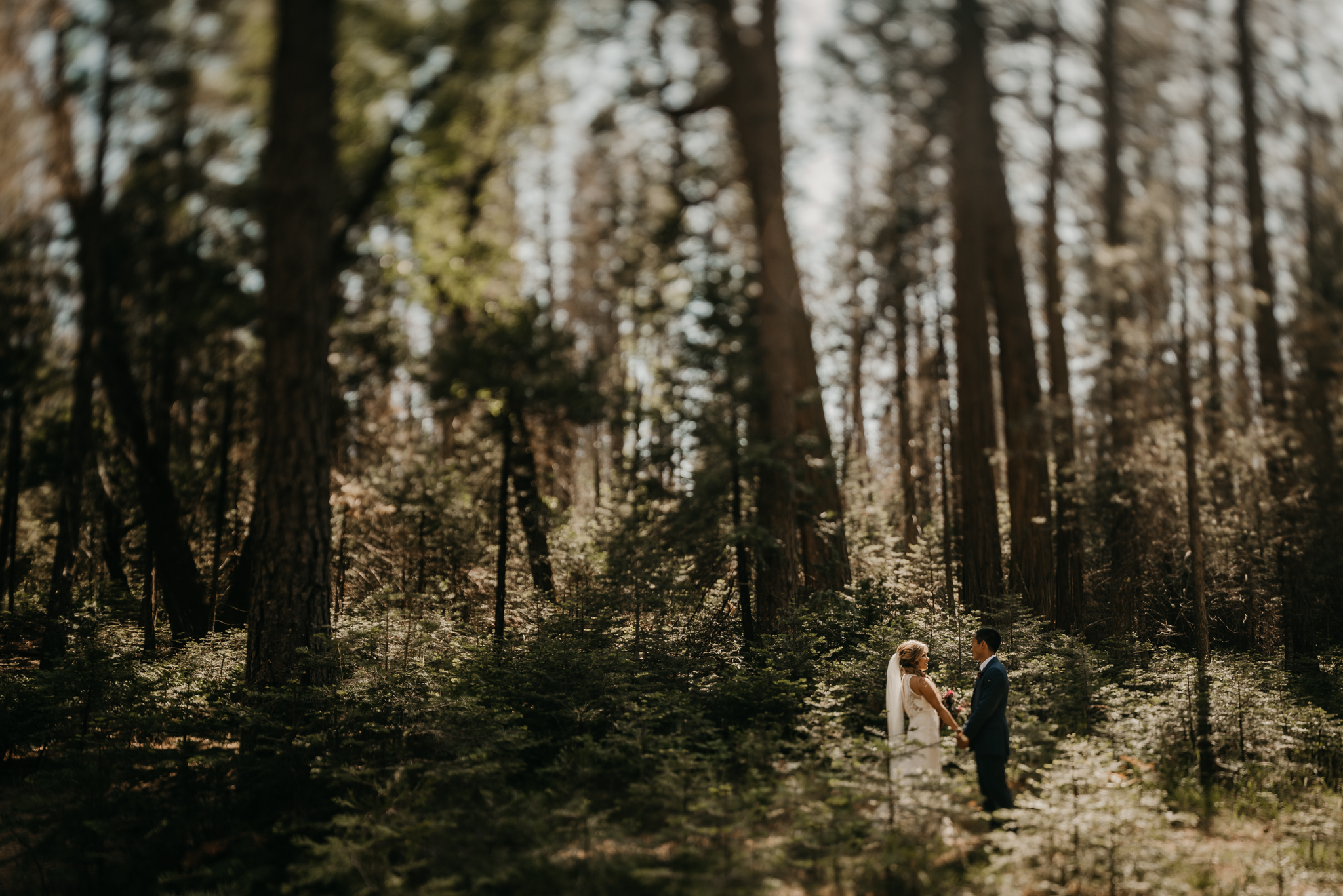 © Isaiah + Taylor Photography - Evergreen Lodge Destination Yoesmite Wedding - Los Angeles Wedding Photographer-128.jpg