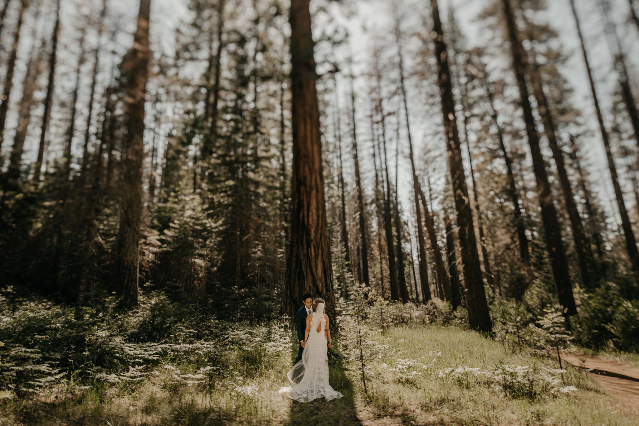 © Isaiah + Taylor Photography - Evergreen Lodge Destination Yoesmite Wedding - Los Angeles Wedding Photographer-138.jpg