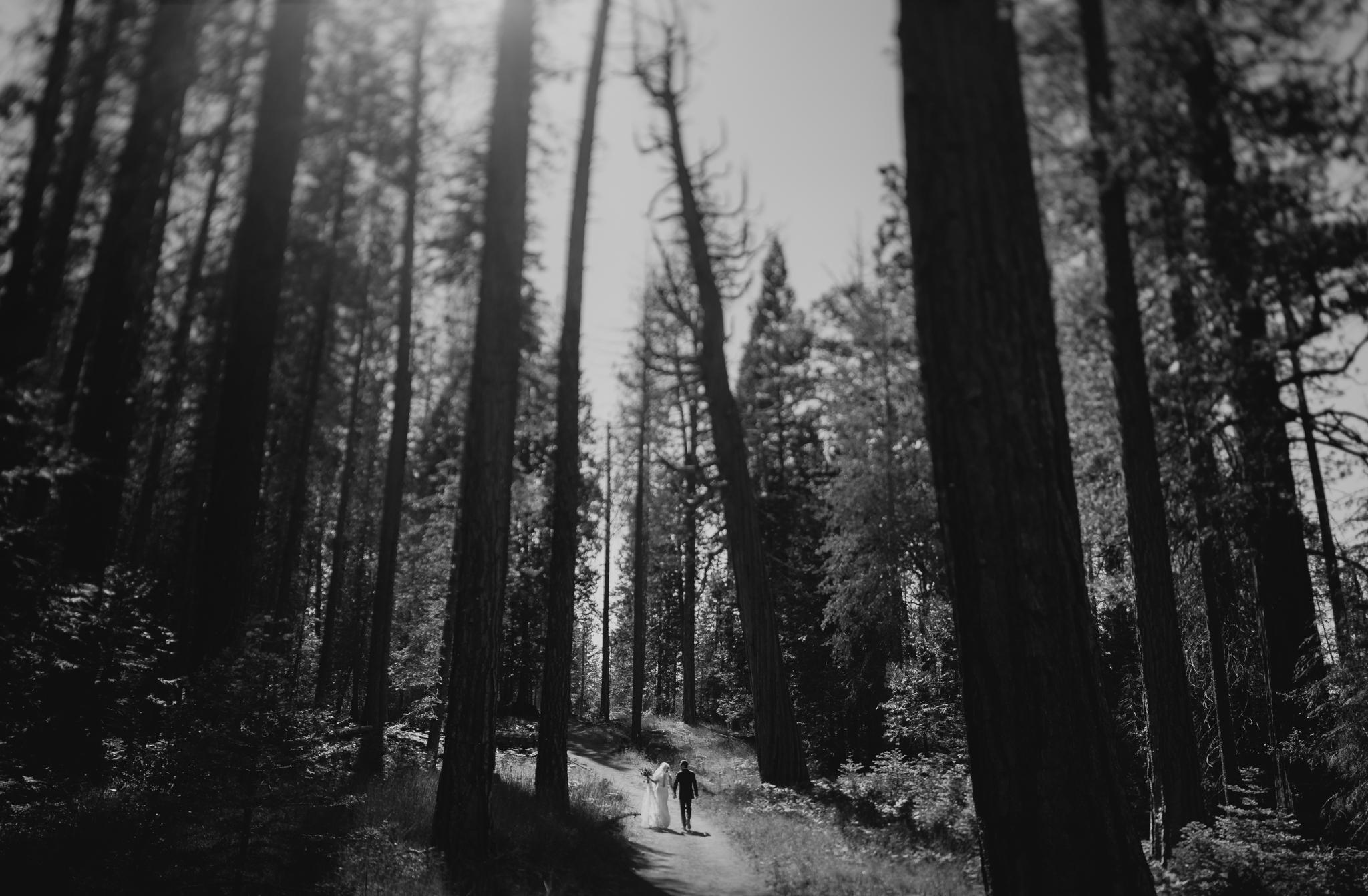 © Isaiah + Taylor Photography - Evergreen Lodge Destination Yoesmite Wedding - Los Angeles Wedding Photographer-149.jpg
