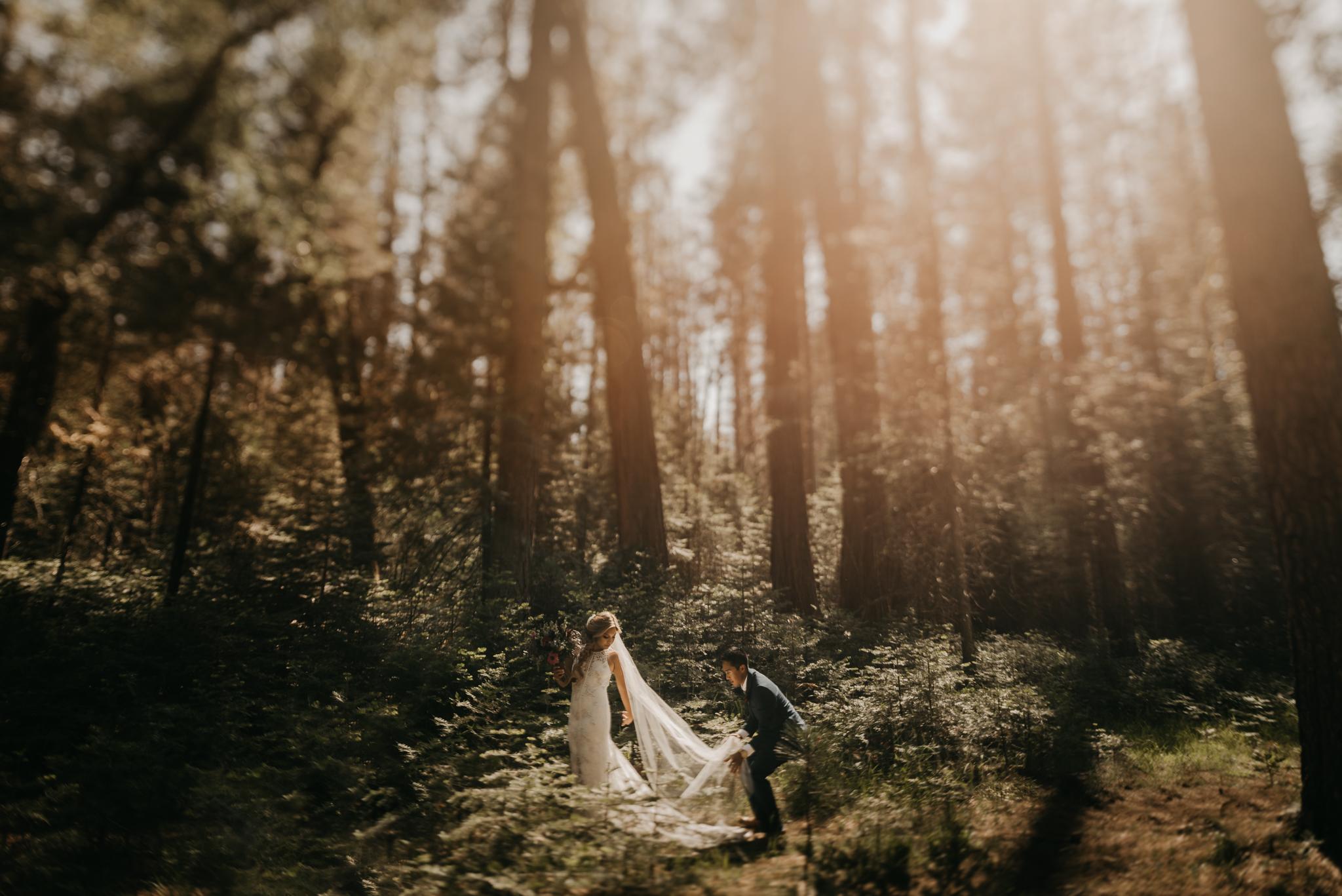 © Isaiah + Taylor Photography - Evergreen Lodge Destination Yoesmite Wedding - Los Angeles Wedding Photographer-129.jpg