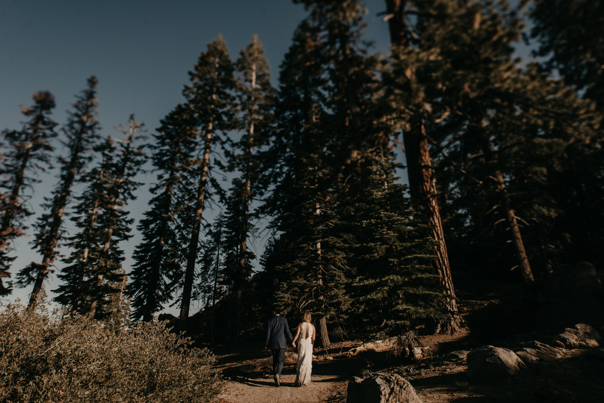 © Isaiah + Taylor Photography - Yosemite Nationanl Park Elopement Photographer - Evergreen Lodge Wedding-003.jpg