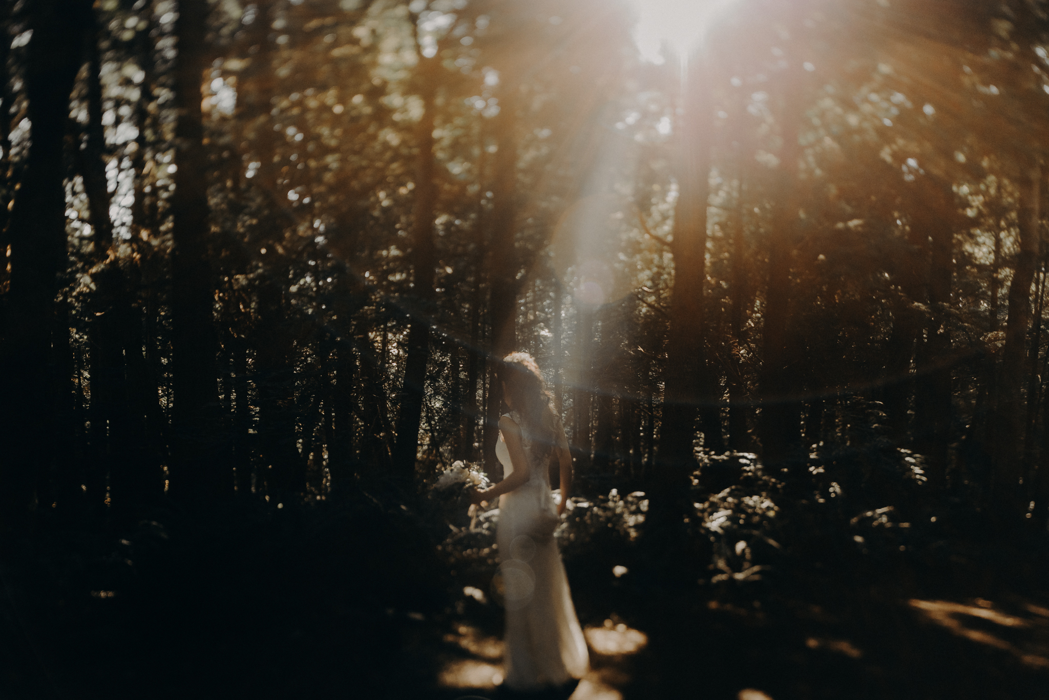 Isaiah + Taylor Photography - Cape Flattery Elopement, Olympia National Forest Wedding Photographer-015.jpg