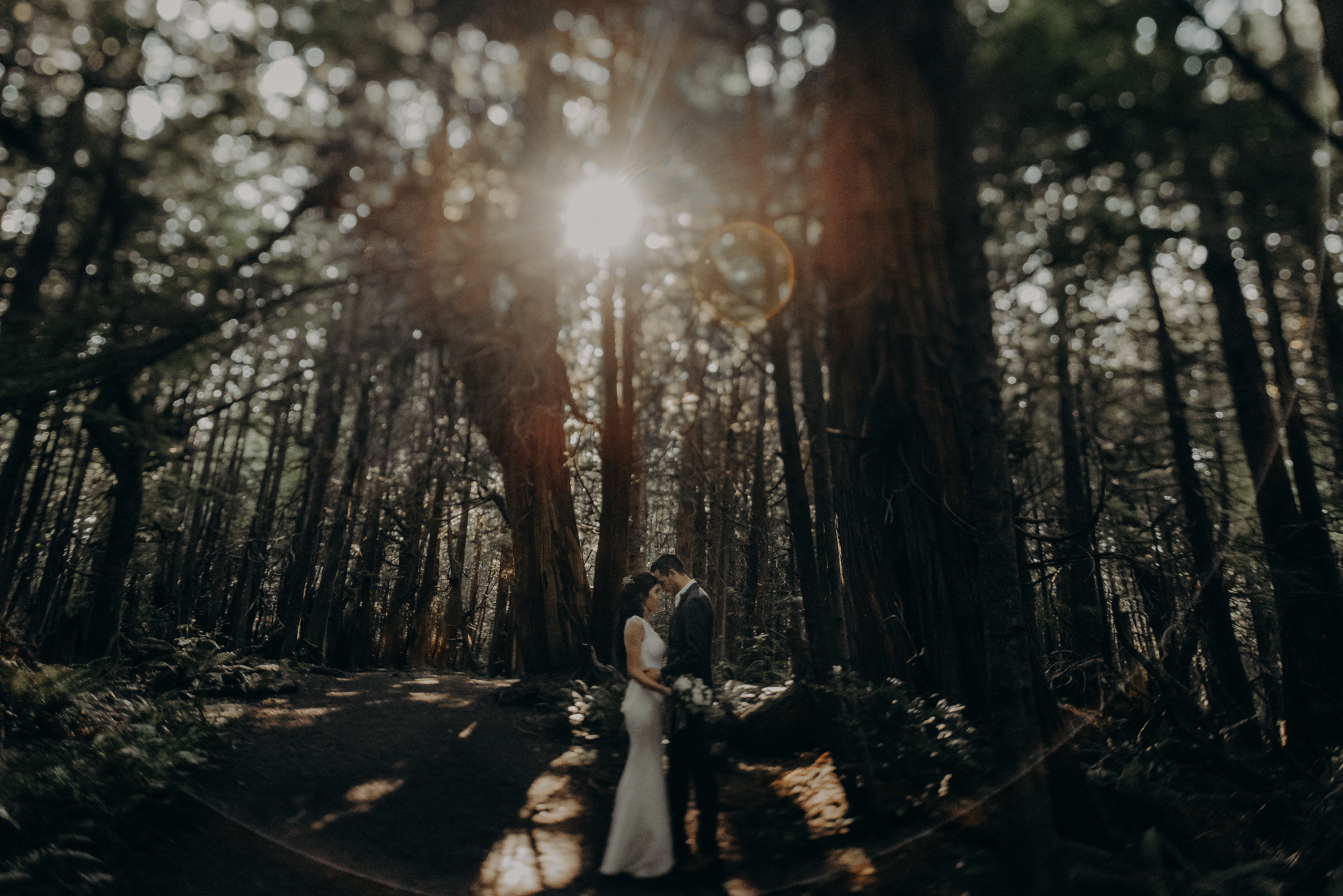 Isaiah + Taylor Photography - Cape Flattery Elopement, Olympia National Forest Wedding Photographer-023.jpg