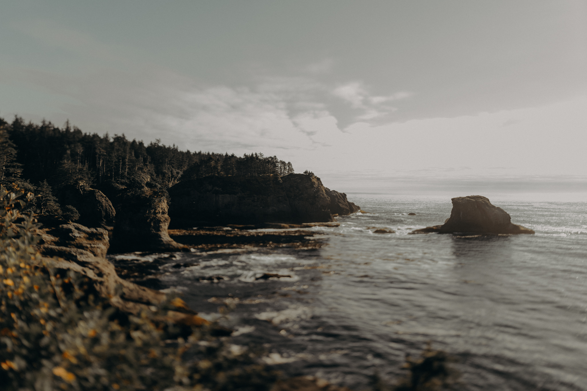 Isaiah + Taylor Photography - Cape Flattery Elopement, Olympia National Forest Wedding Photographer-038.jpg