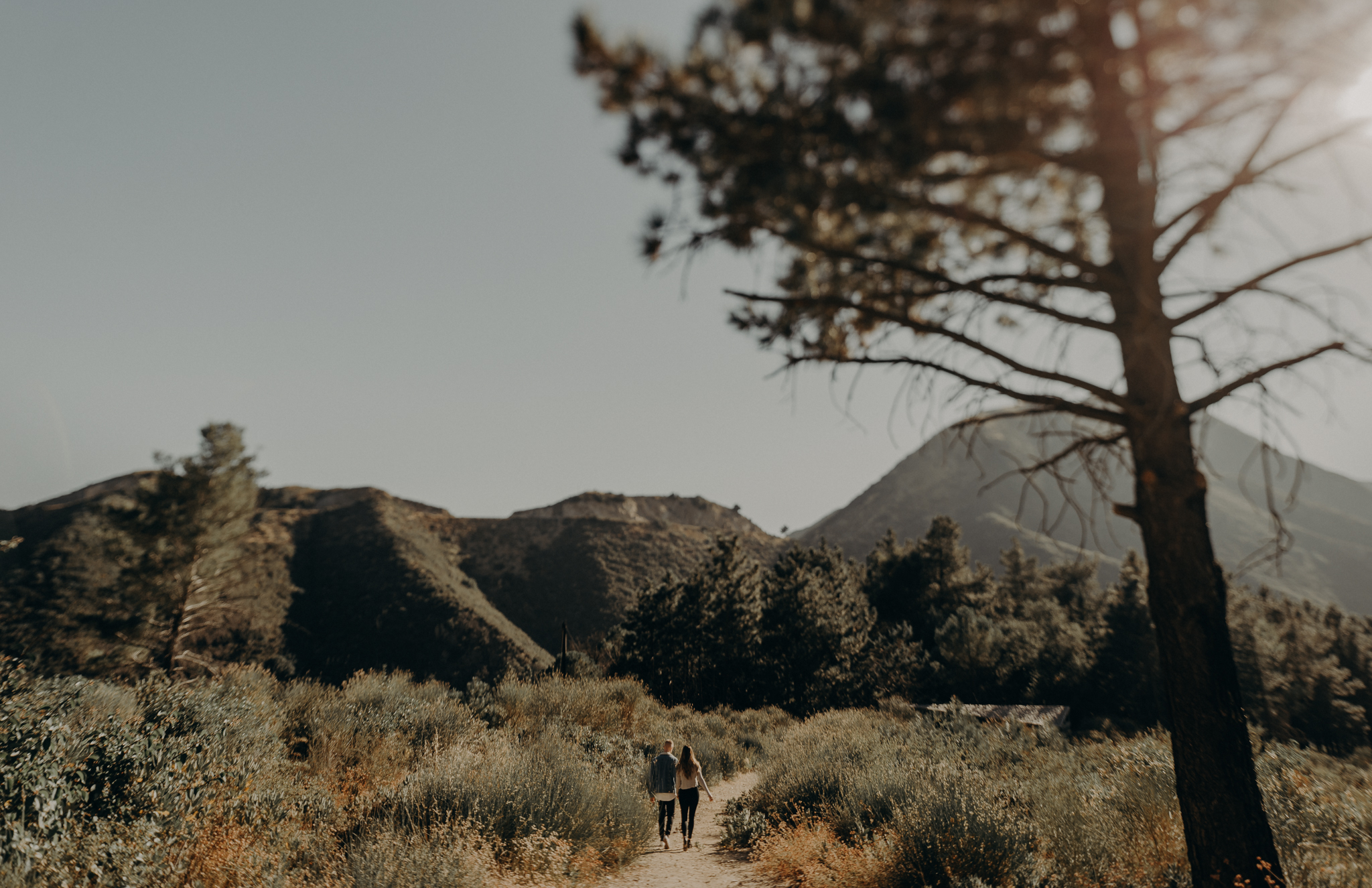 Isaiah + Taylor Photography - Los Angeles Forest Engagement, Laid-back Wedding Photographer-008.jpg