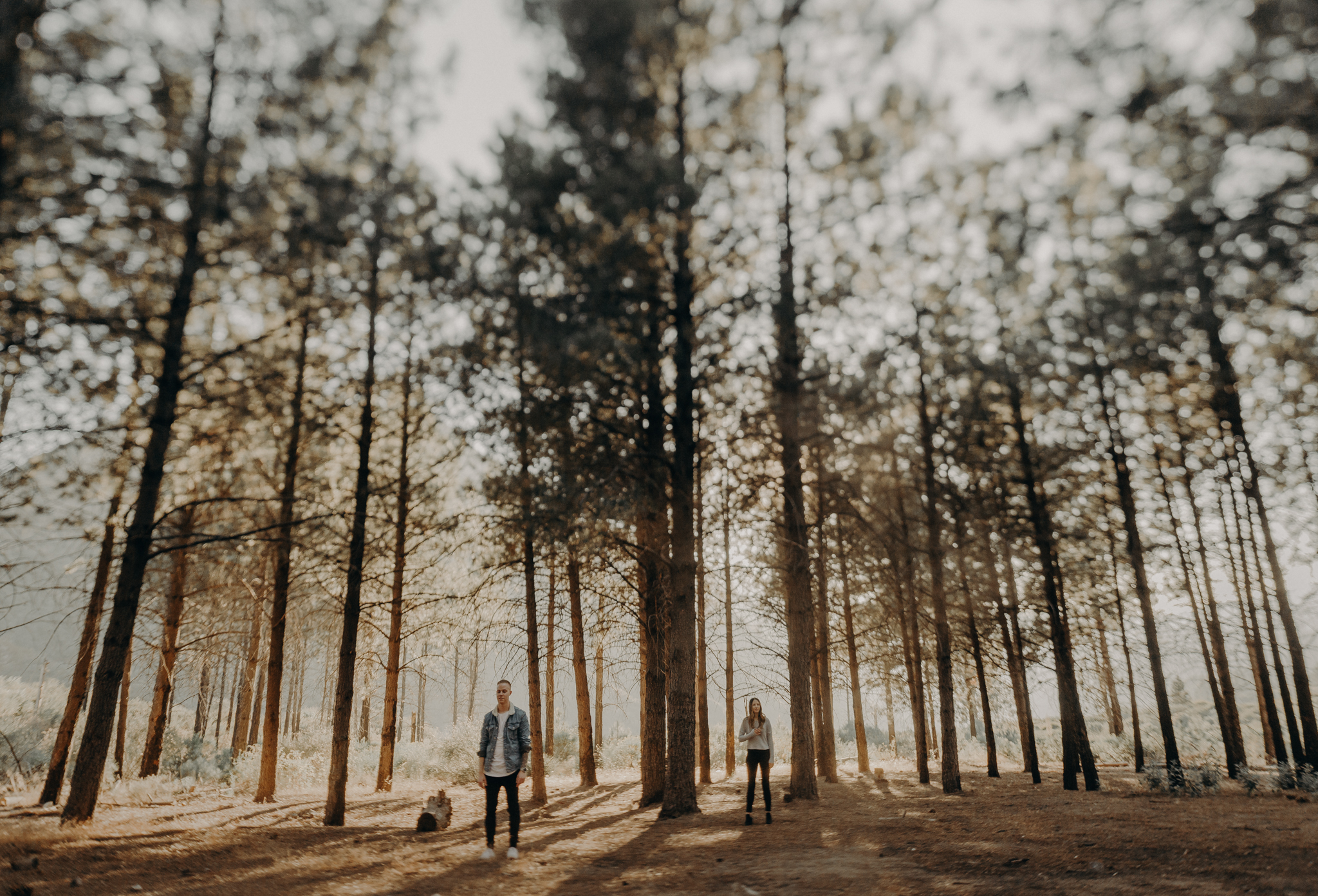 Isaiah + Taylor Photography - Los Angeles Forest Engagement, Laid-back Wedding Photographer-066.jpg