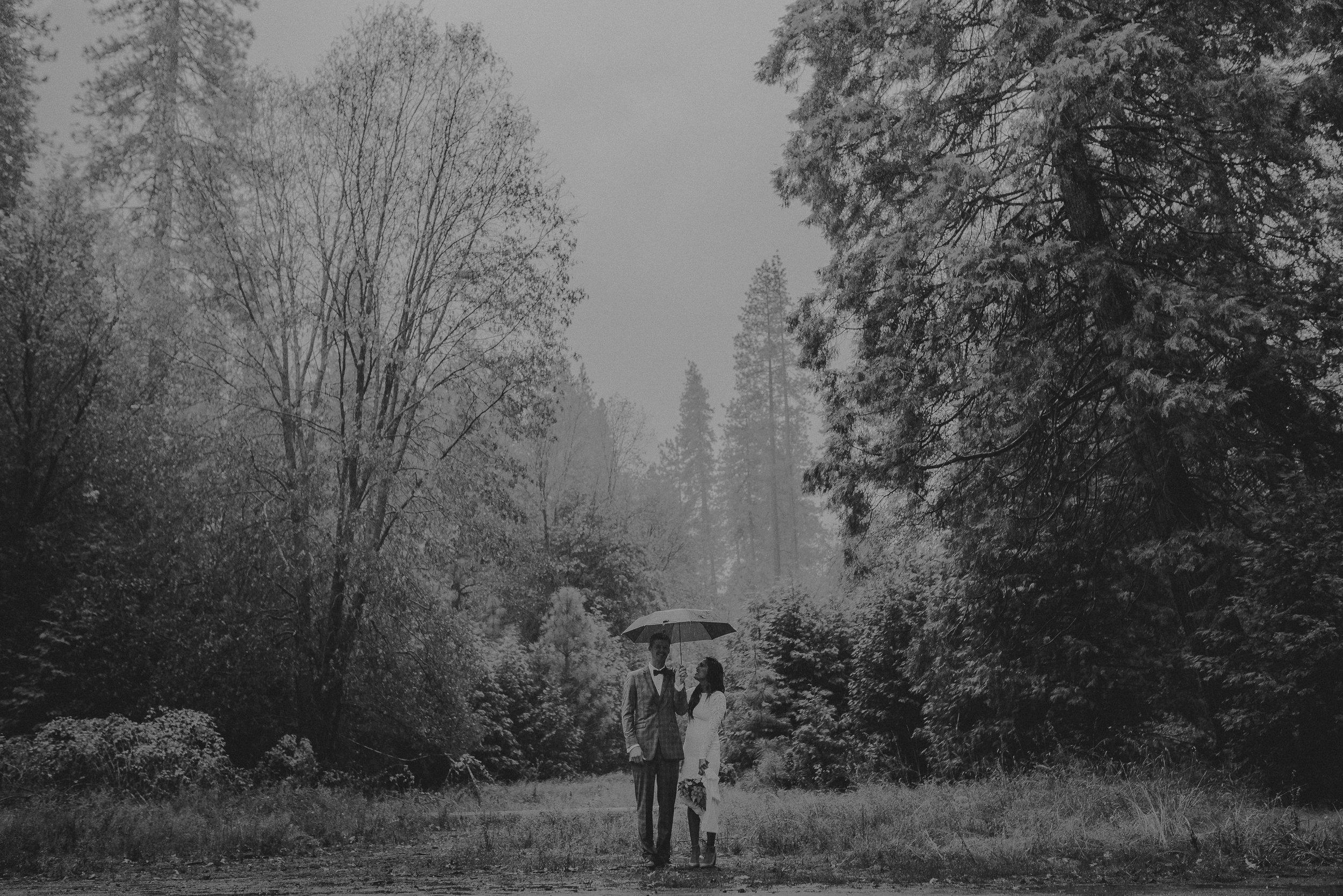 Isaiah + Taylor Photography - Yosemite Elopement - Los Angeles Wedding Photographer-20.jpg