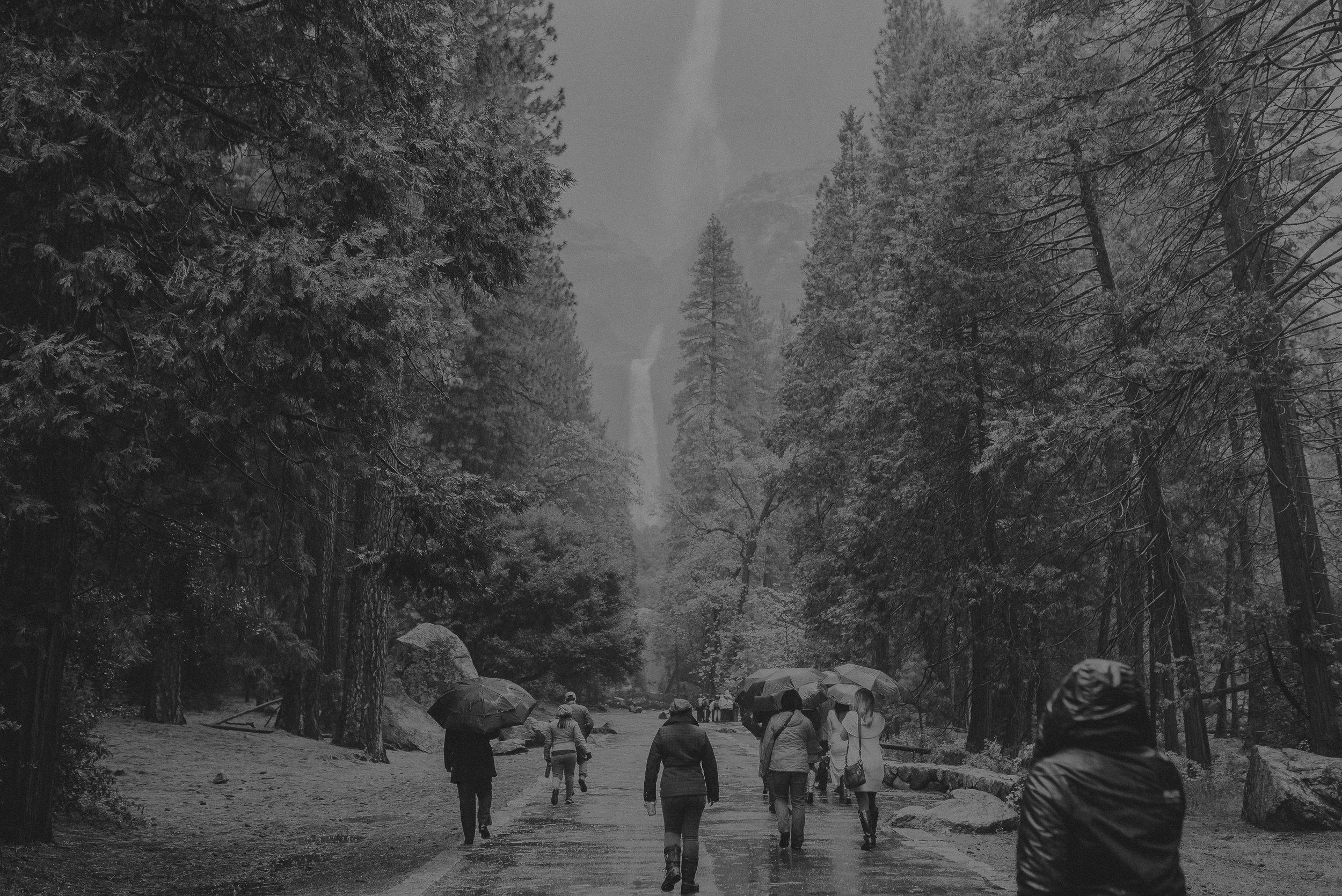Isaiah + Taylor Photography - Yosemite Elopement - Los Angeles Wedding Photographer-25.jpg