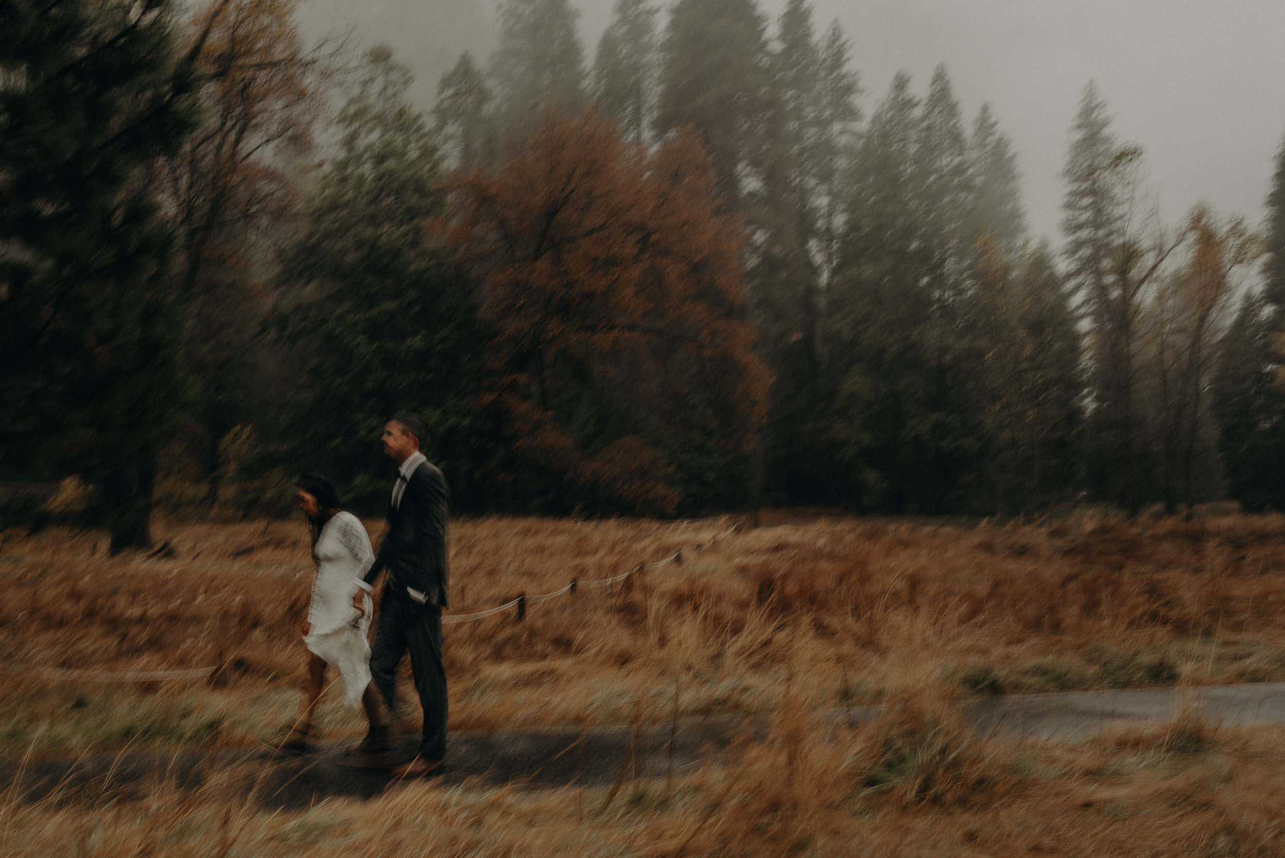 Isaiah + Taylor Photography - Yosemite Elopement - Los Angeles Wedding Photographer-82.jpg