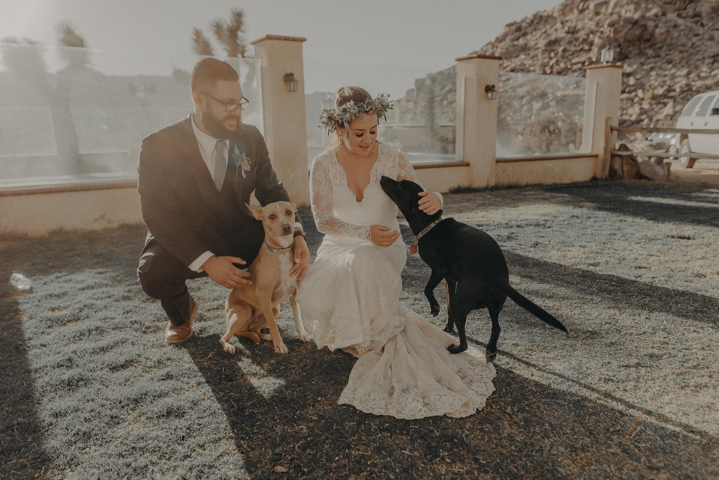 ©Isaiah + Taylor Photography - Joshua Tree Wedding Elopement-084.jpg