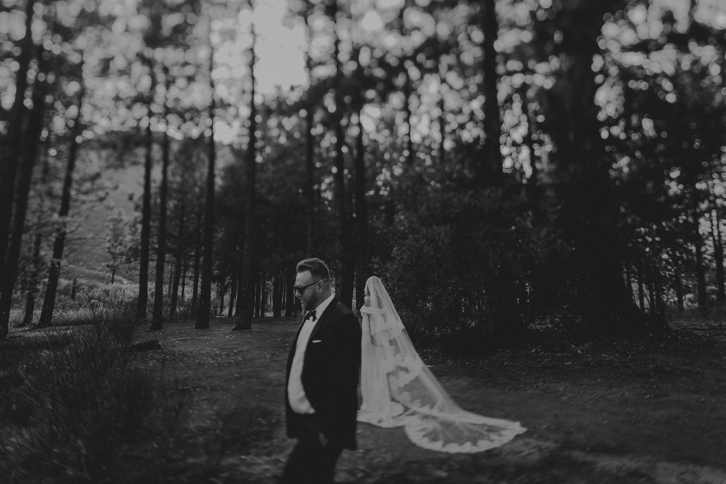 Isaiah + Taylor Photography - Amy + Cole Wedding - Slideshow-105.jpg