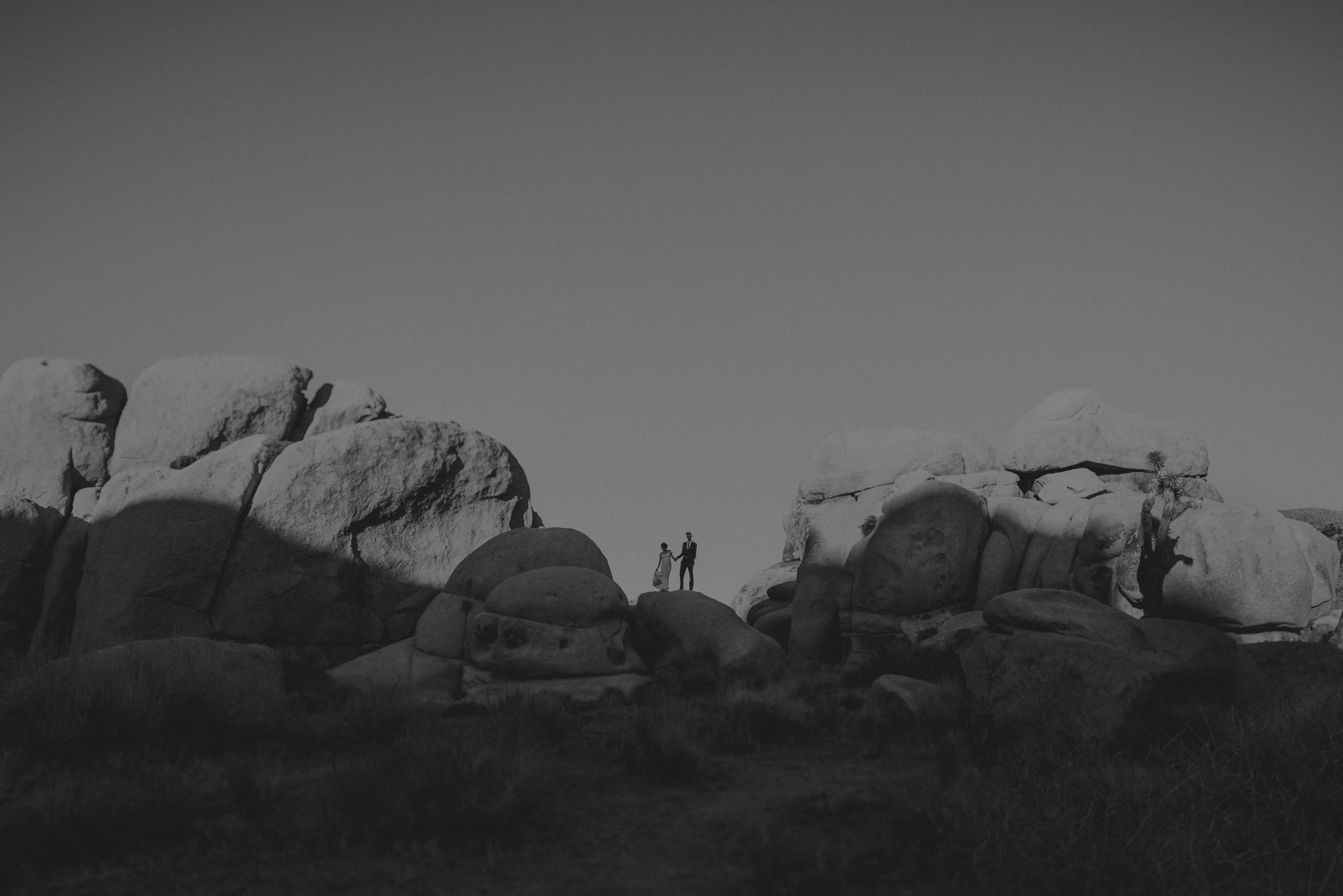 Joshua Tree Elopement - Los Angeles Wedding Photographers - IsaiahAndTaylor.com-069.jpg