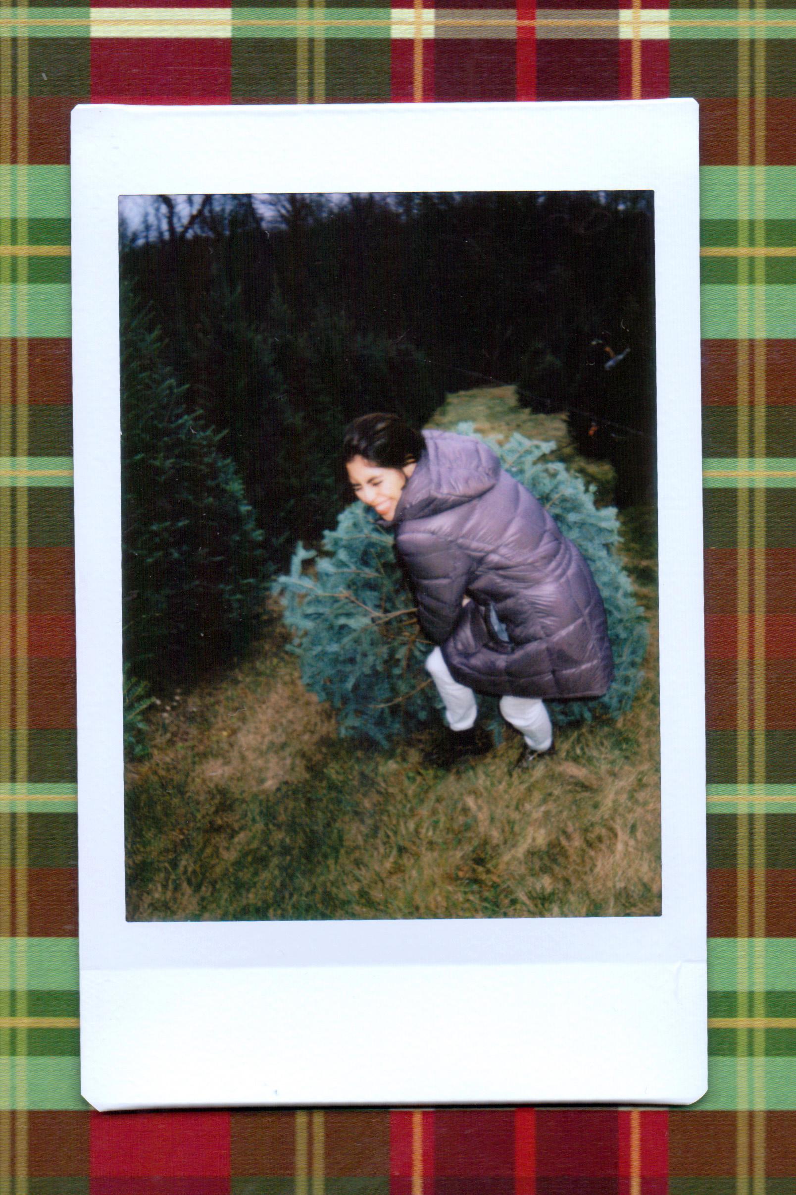 tree 6.jpeg