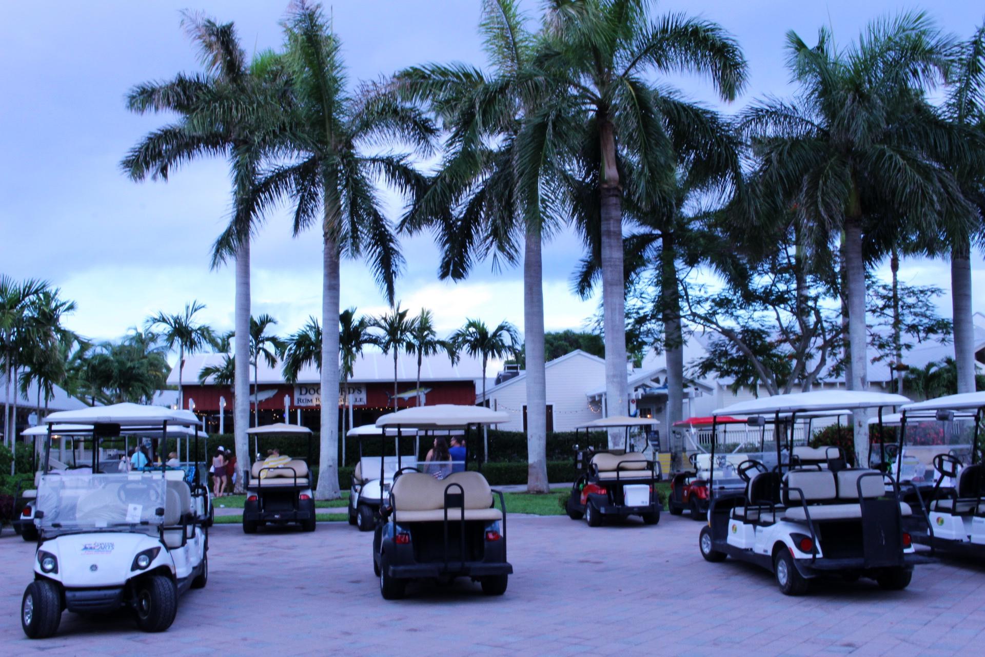 florida-vacation-edit-24.jpg