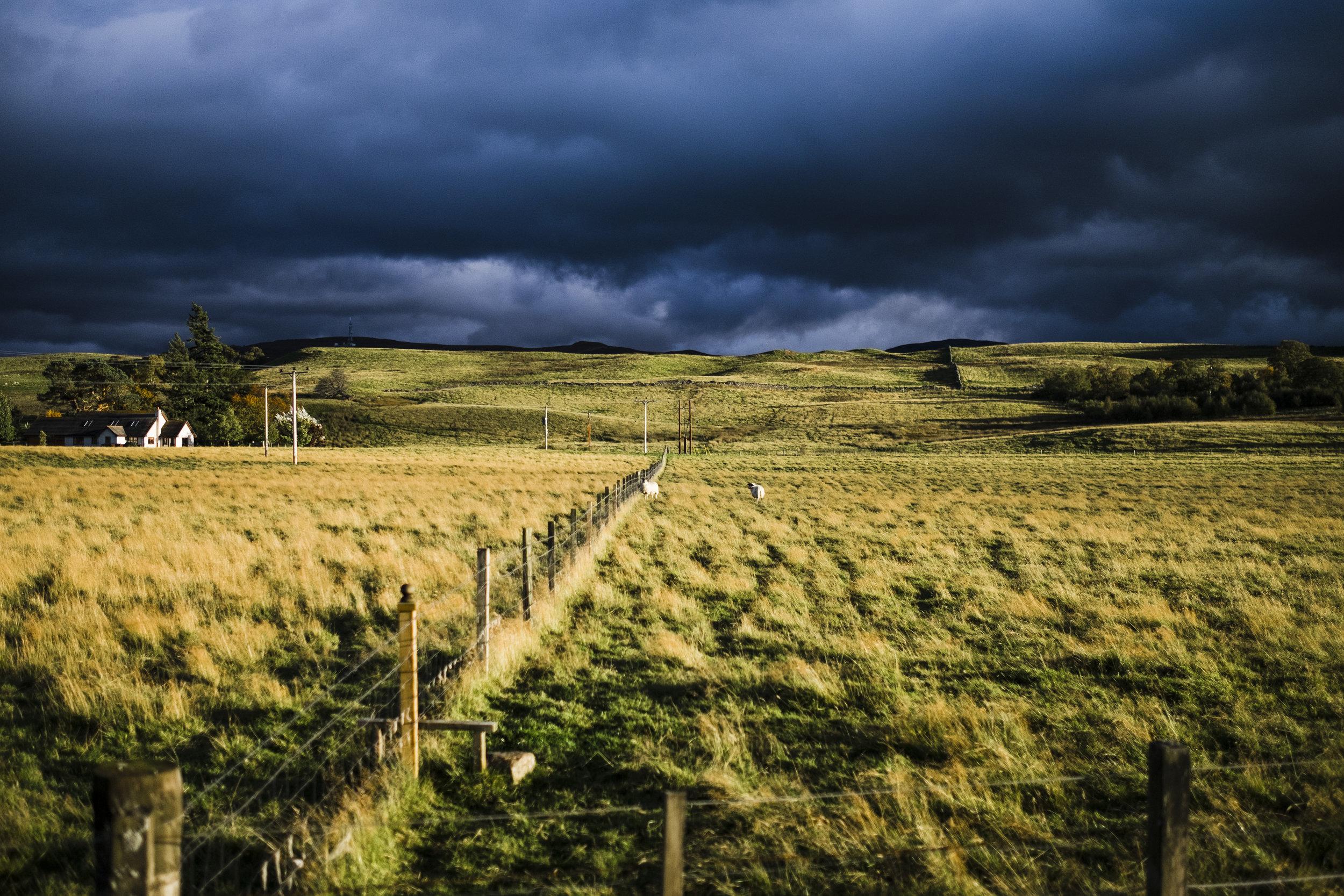 scotland.1717.JPG