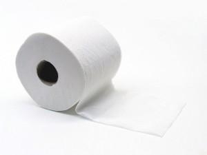 800px-Toiletpapier_Gobran111-300x225.jpg