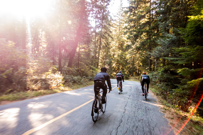 20141115-StefanF-ForestCycling-_DSC3485.jpg