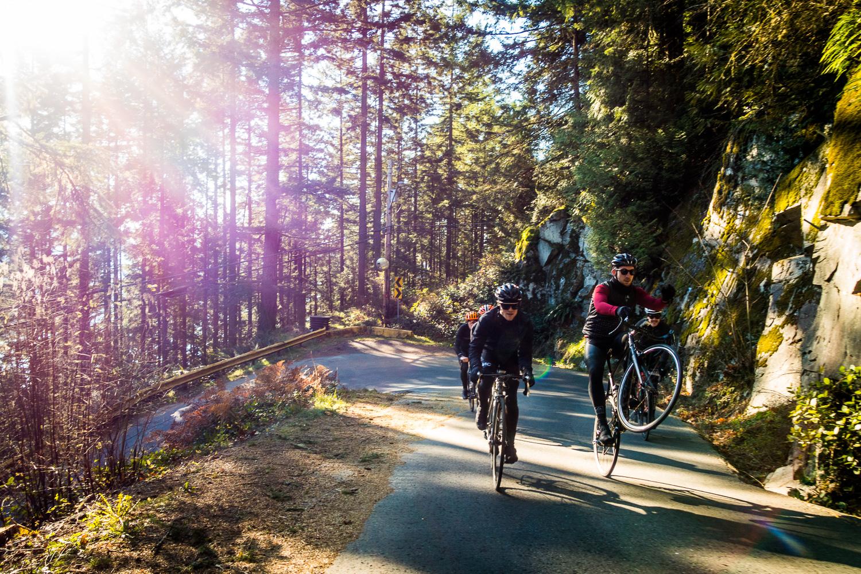 20141115-StefanF-ForestCycling-_DSC3225.jpg
