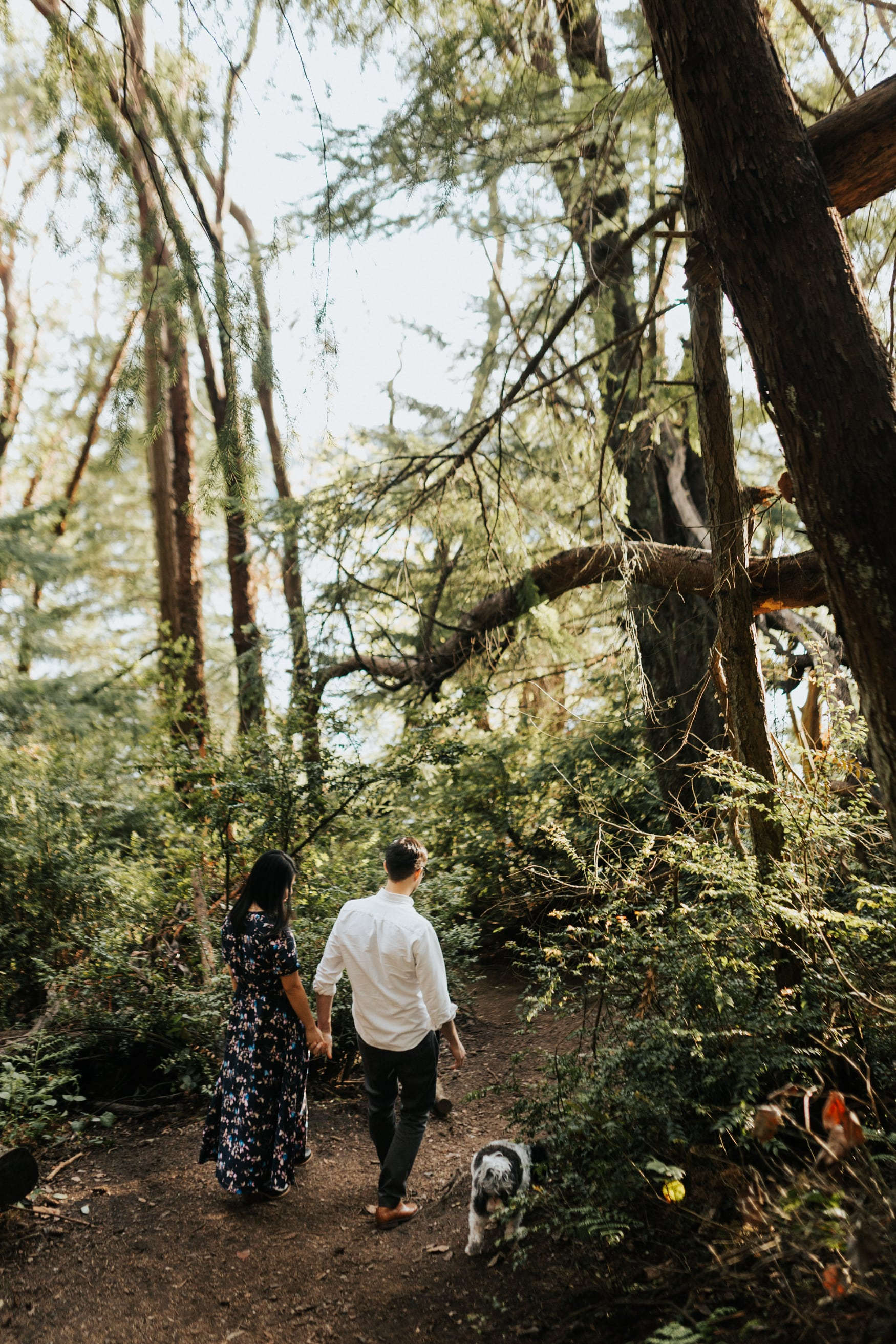 tacoma_point_defiance_mini_engagement_16-min.jpg