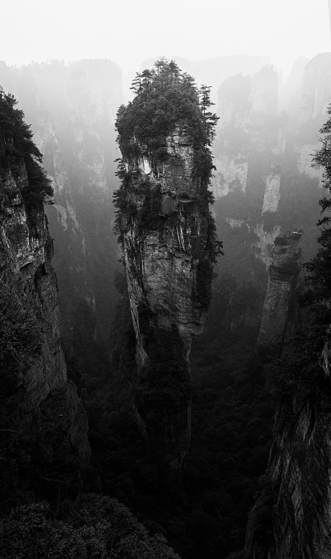 The Heavenly Pillar at Zhangjiajie. China