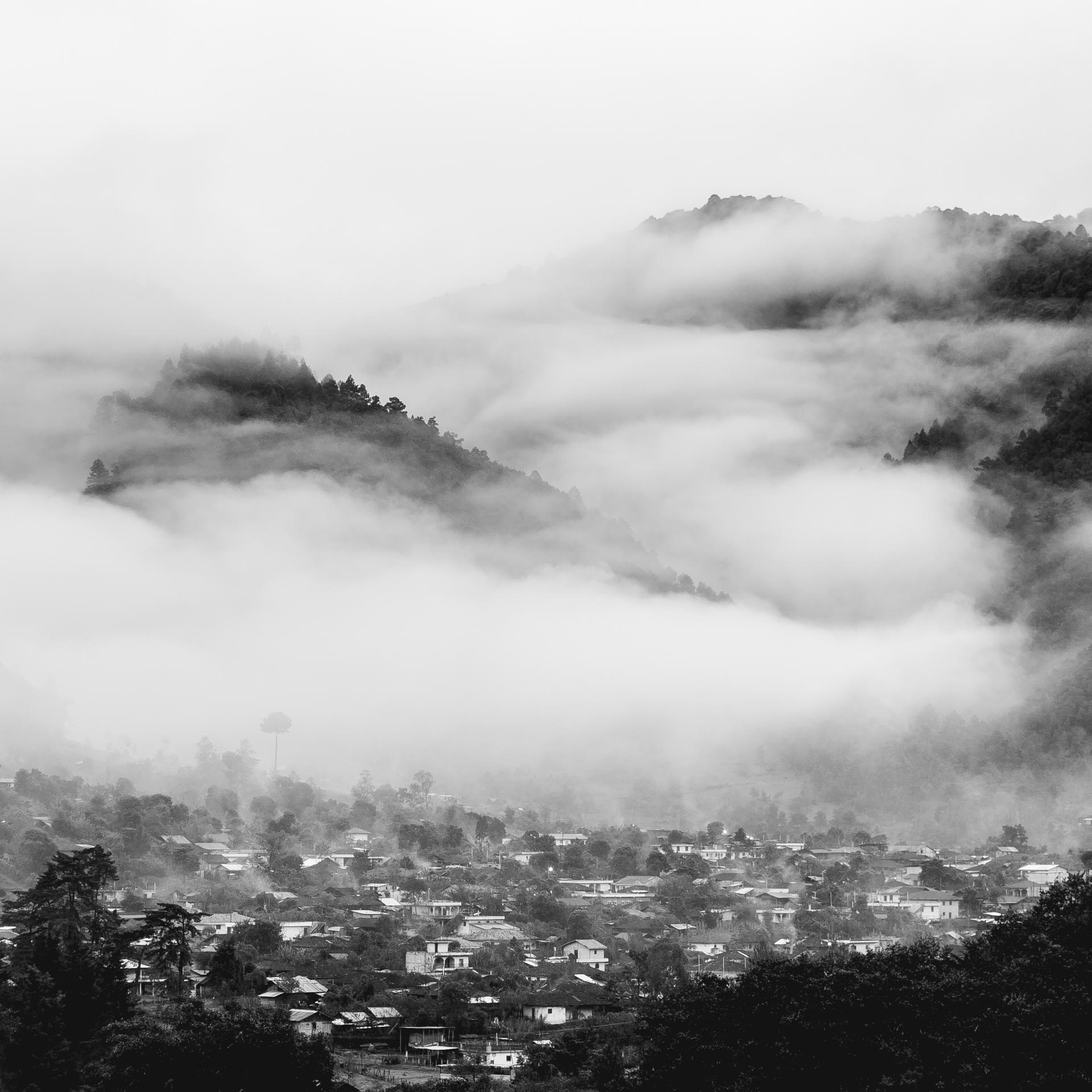 Morning fog over Acúl. Guatemala