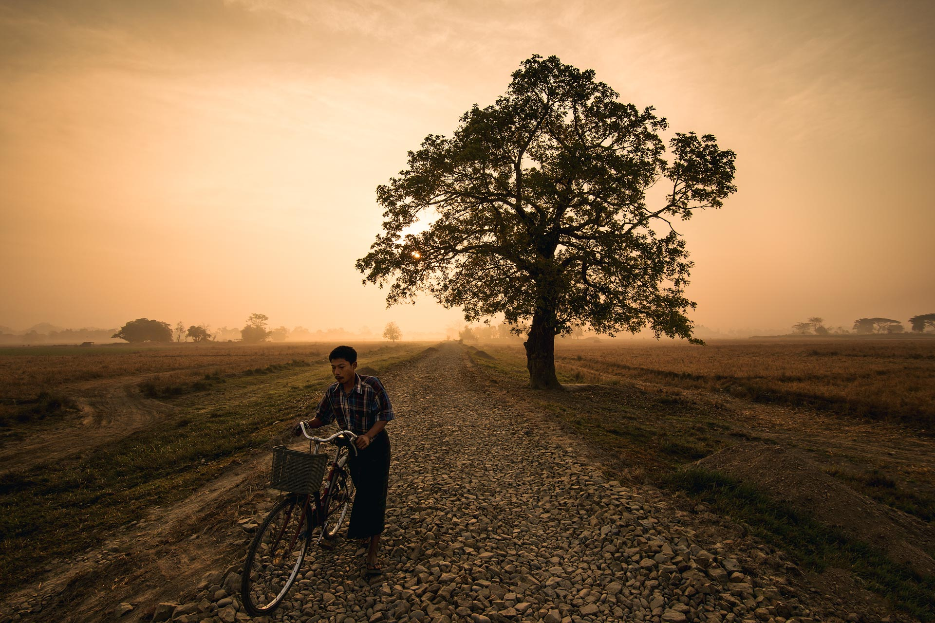 Cyclist on a foggy morning outside of Mrauk U. Myanmar
