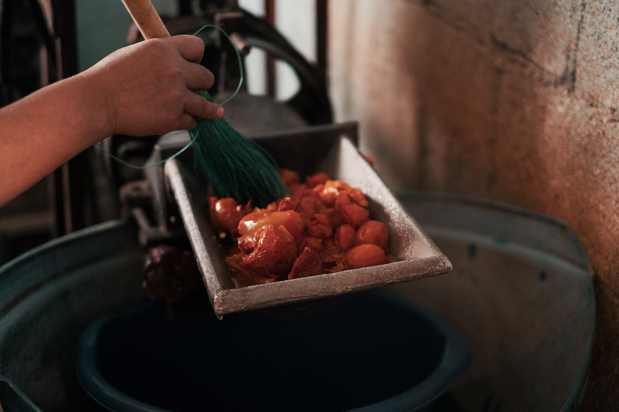 Pureeing the tomatoes in the mill.