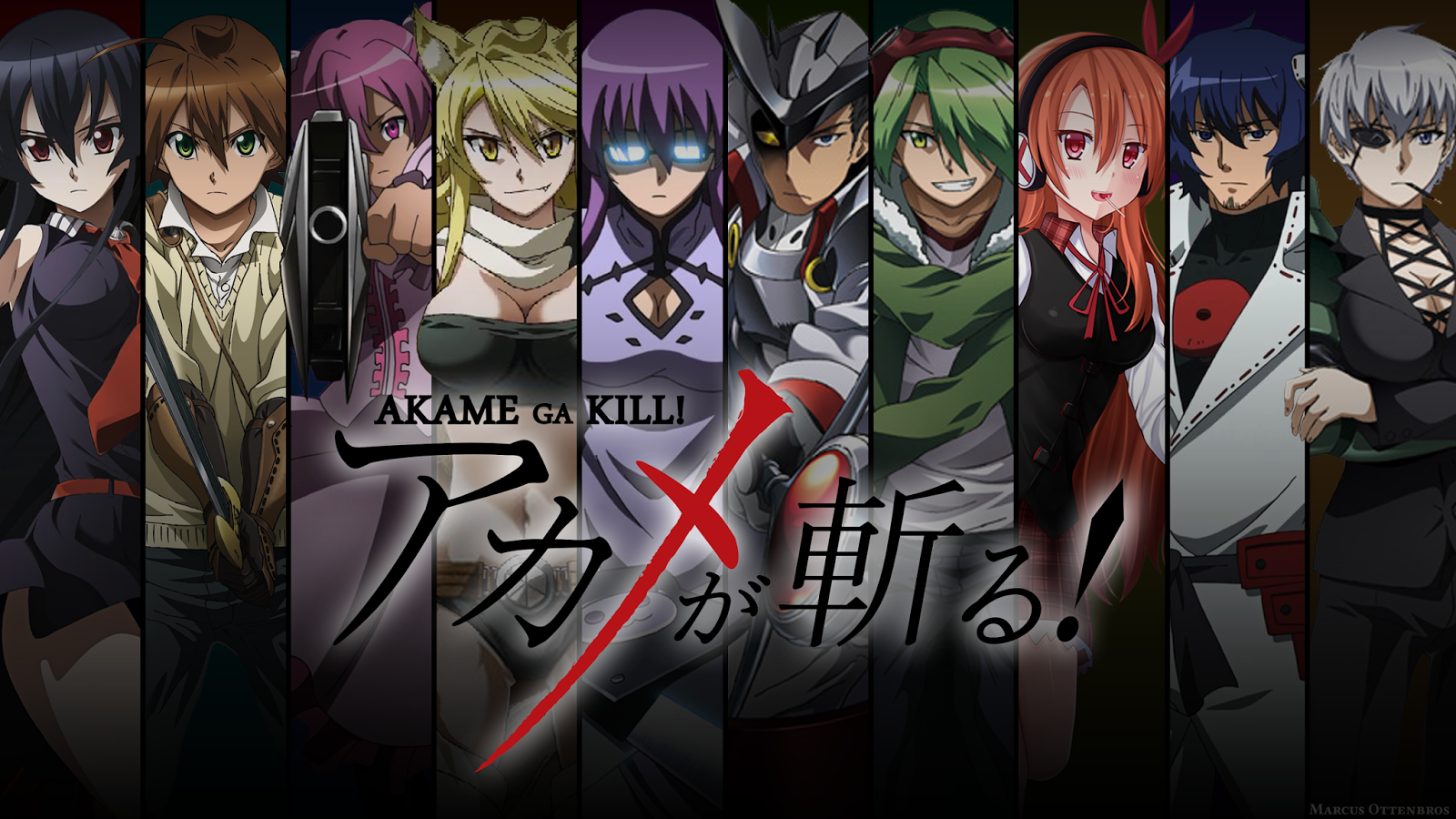 akame_ga_kill__by_marcus_sen-d8a239n.png